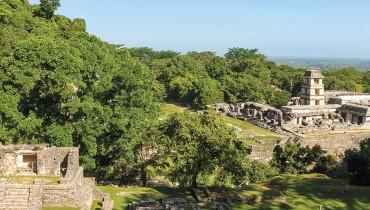 Voyage Mexique - Temple Maya Palenque - Amplitudes