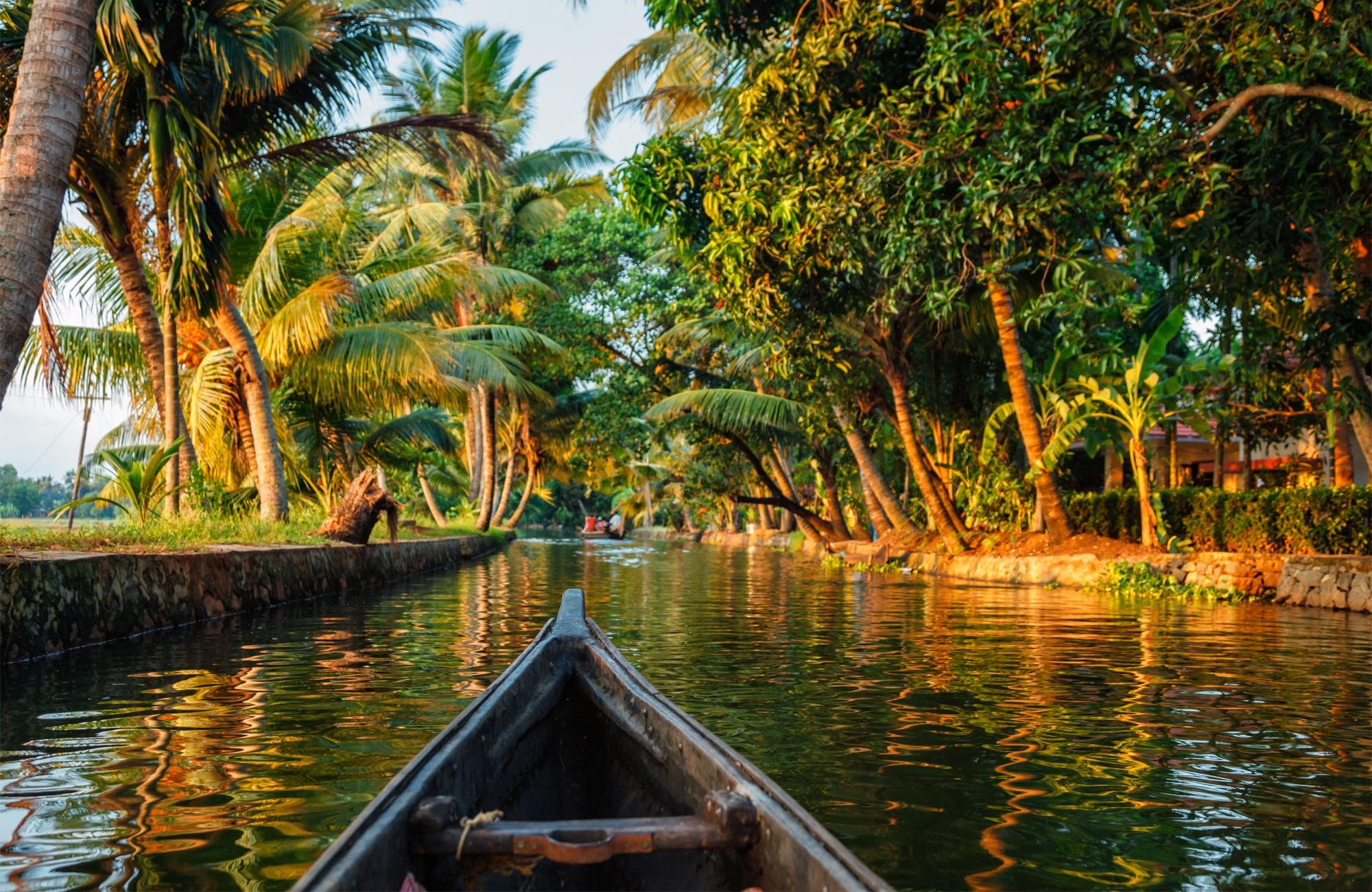 Voyage Inde - Backwaters Kerala - Amplitudes