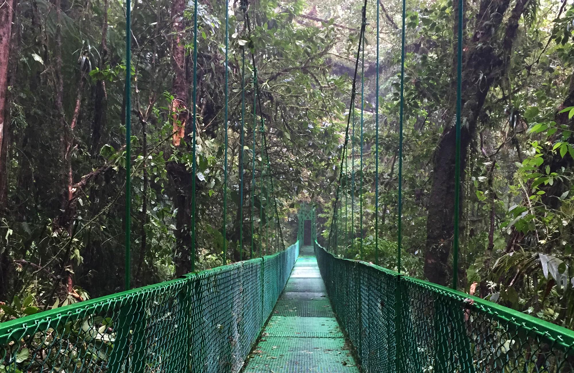 Voyage Costa Rica - Pont suspendu Monteverde - Amplitudes