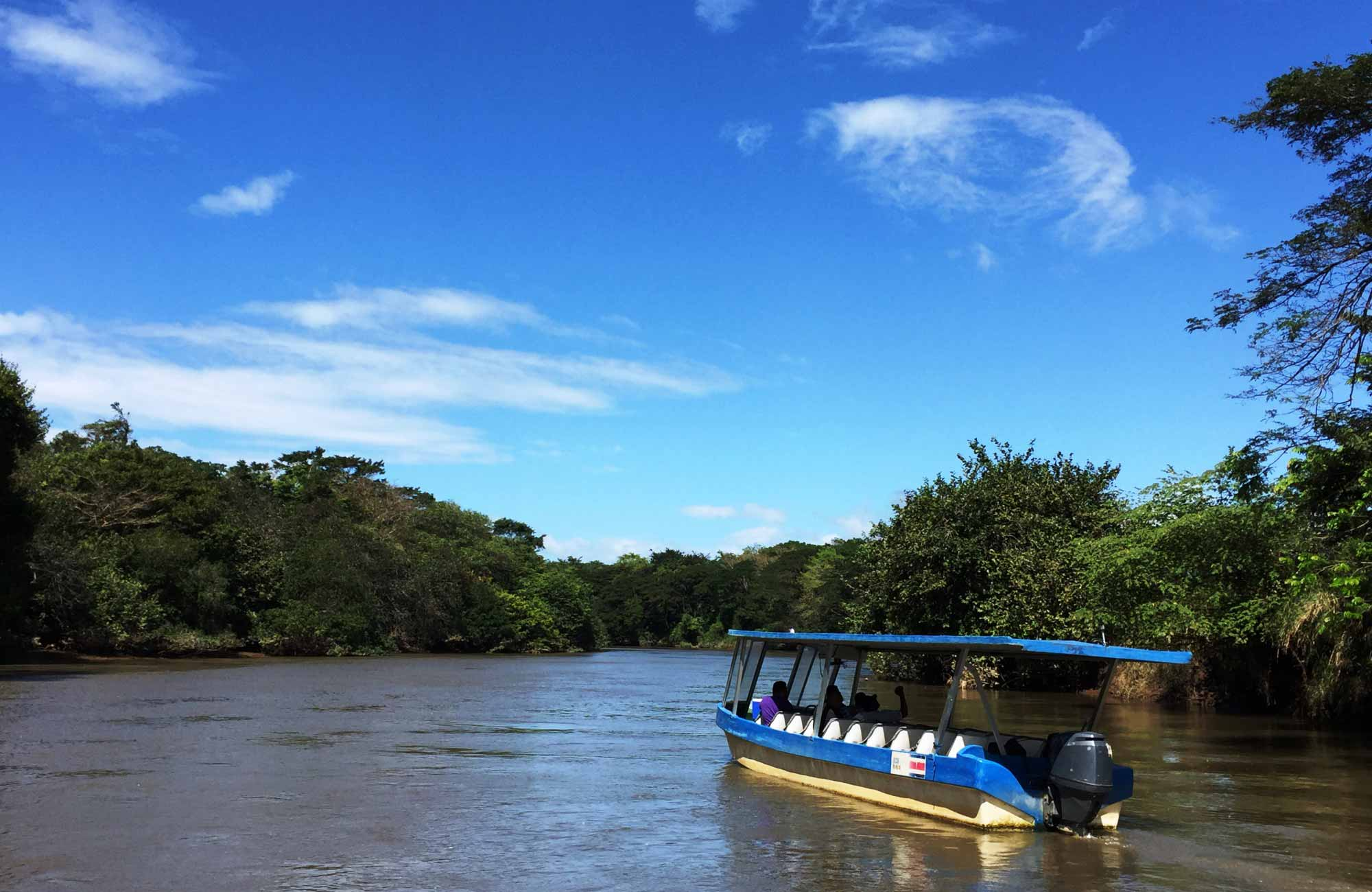 Voyage Costa Rica - Croisière Bebedero Crocodiles