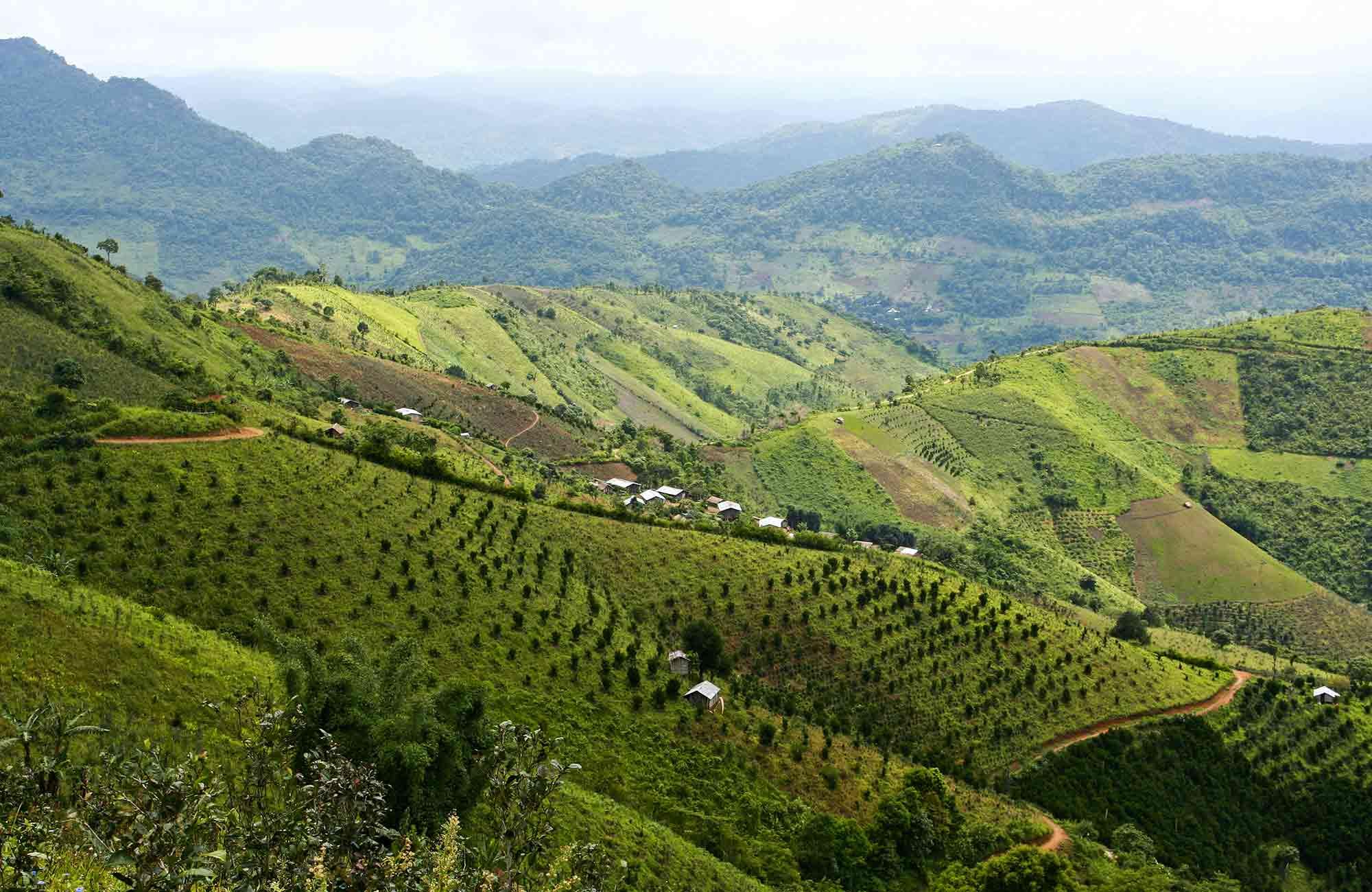 Voyage Birmanie-Myanmar - Kalaw - Amplitudes