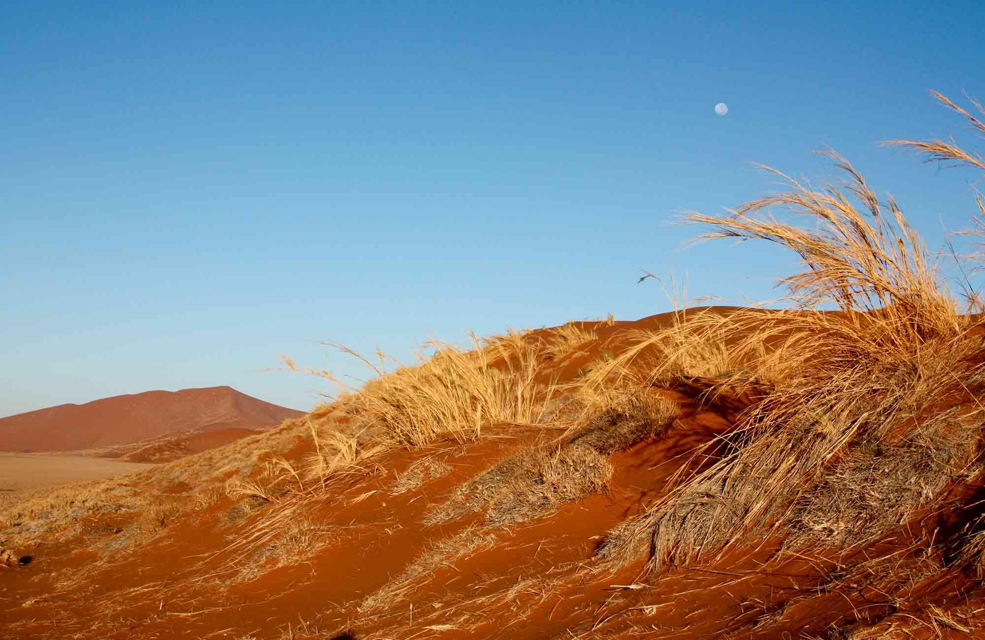 Voyage Namibie - Dunes rouges Désert du Namib - Amplitudes