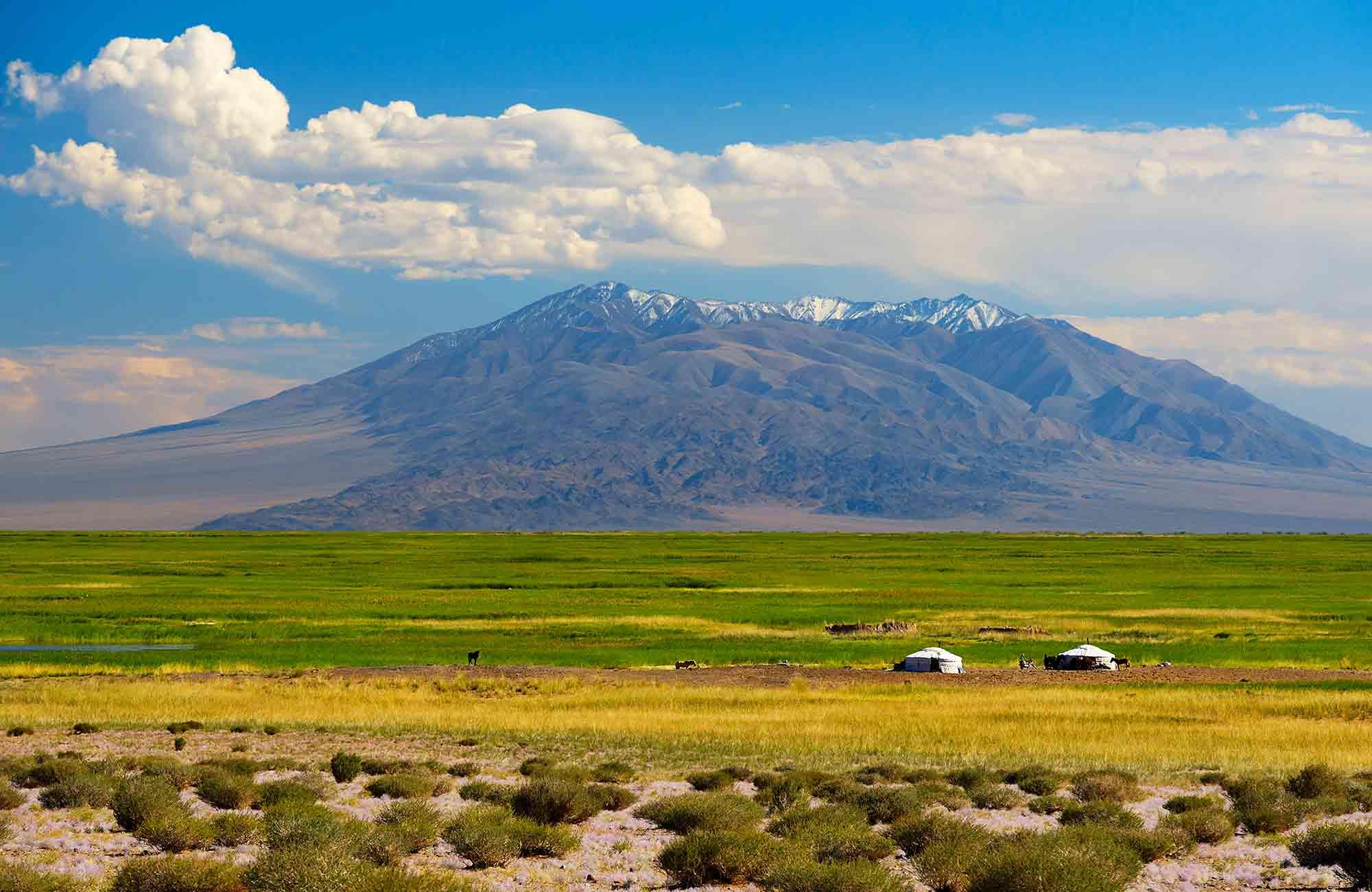 Voyage Mongolie - Steppes - Amplitudes
