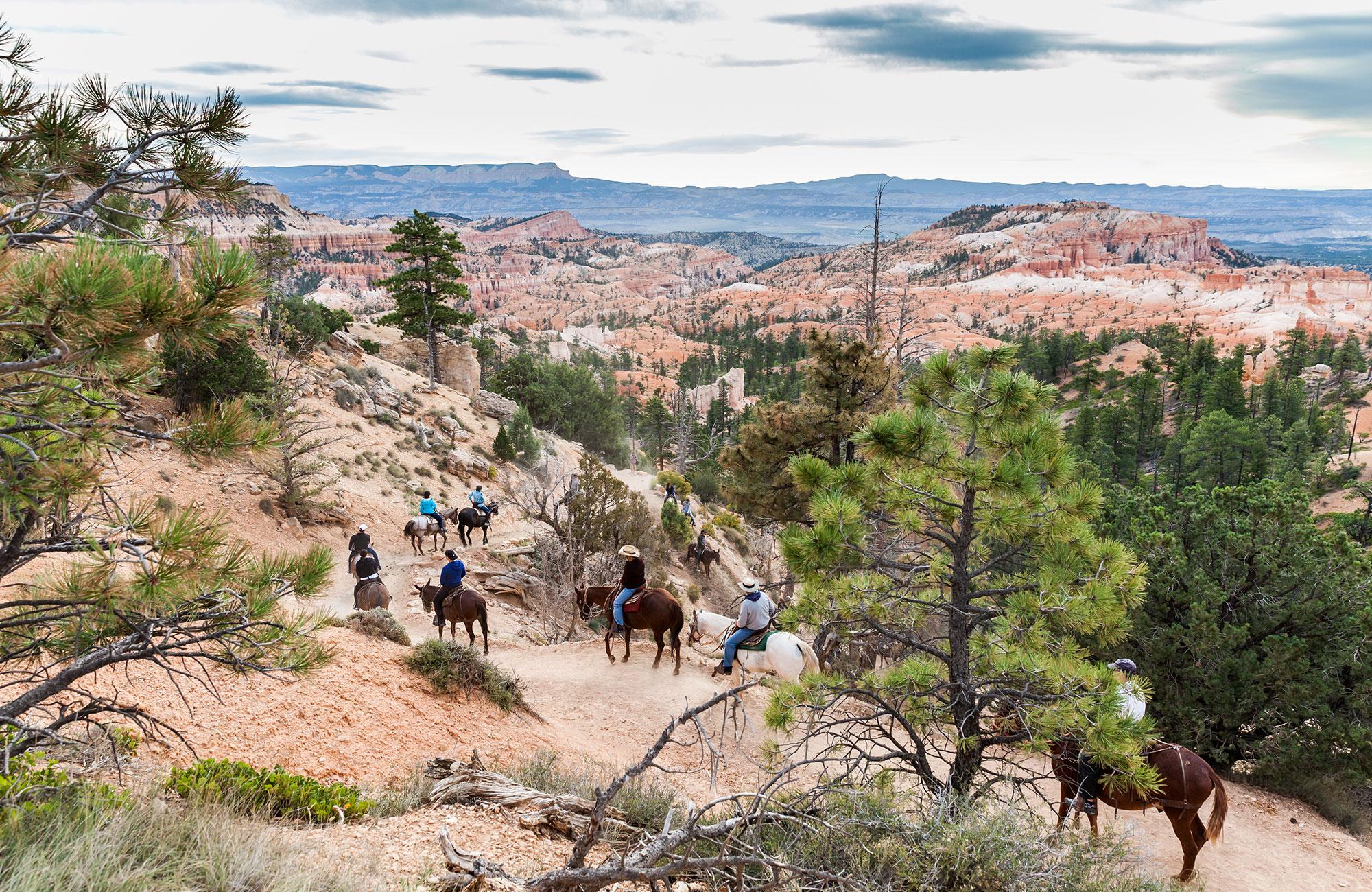 Voyage Ouest américain - balade à cheval Bryce Canyon - Amplitudes