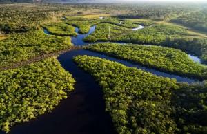 Sur les rives de l'Amazone