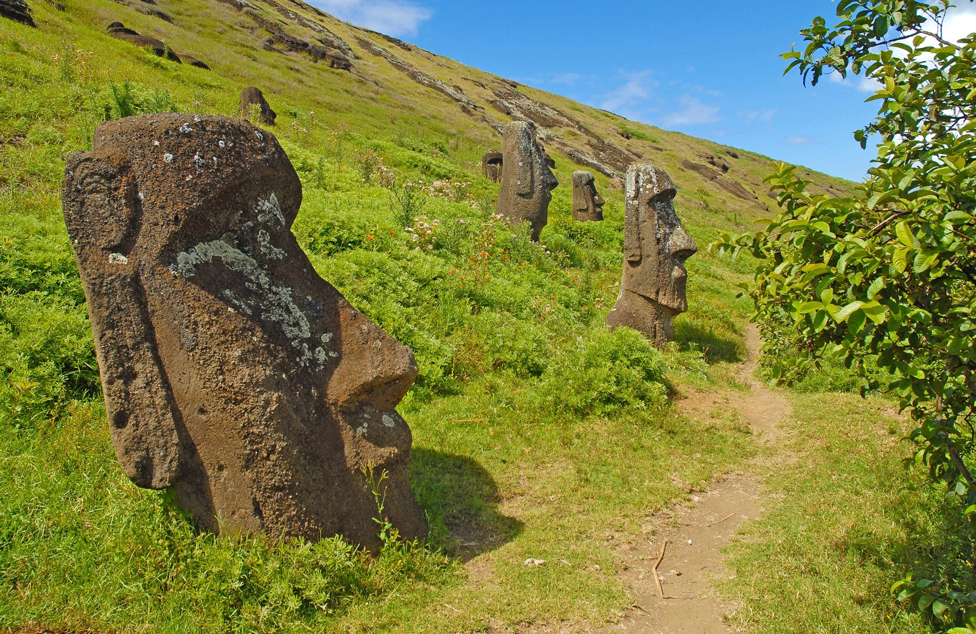 Chili-Moai-Rapa-Nui-Amplitudes