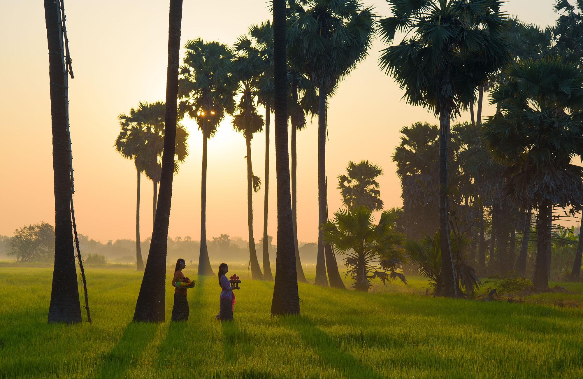 Bali-indonésie-rizières-Amplitudes