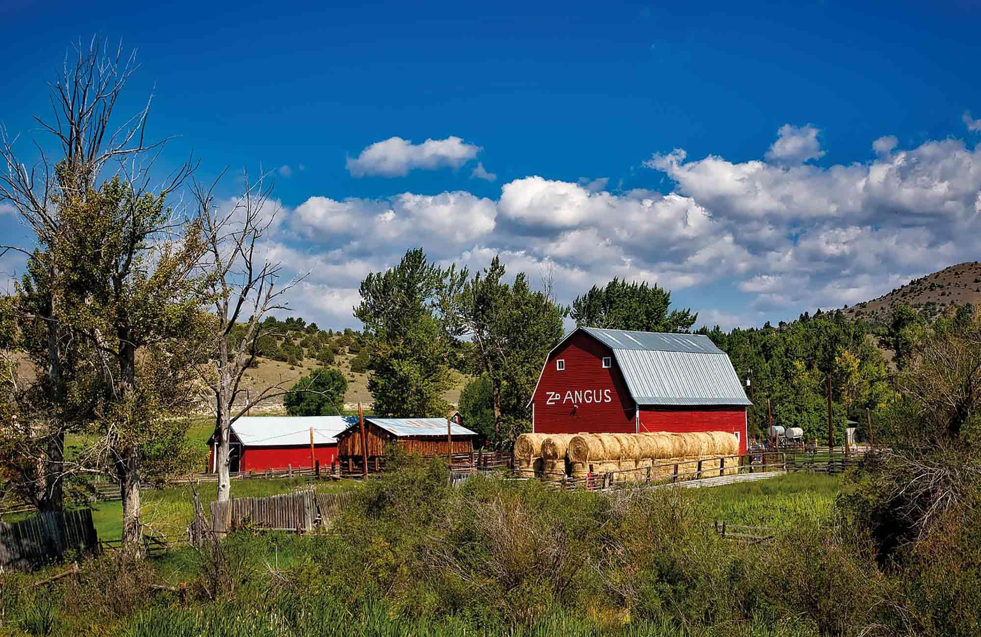 Voyage Etats-Unis - Ranch Montana - Amplitudes
