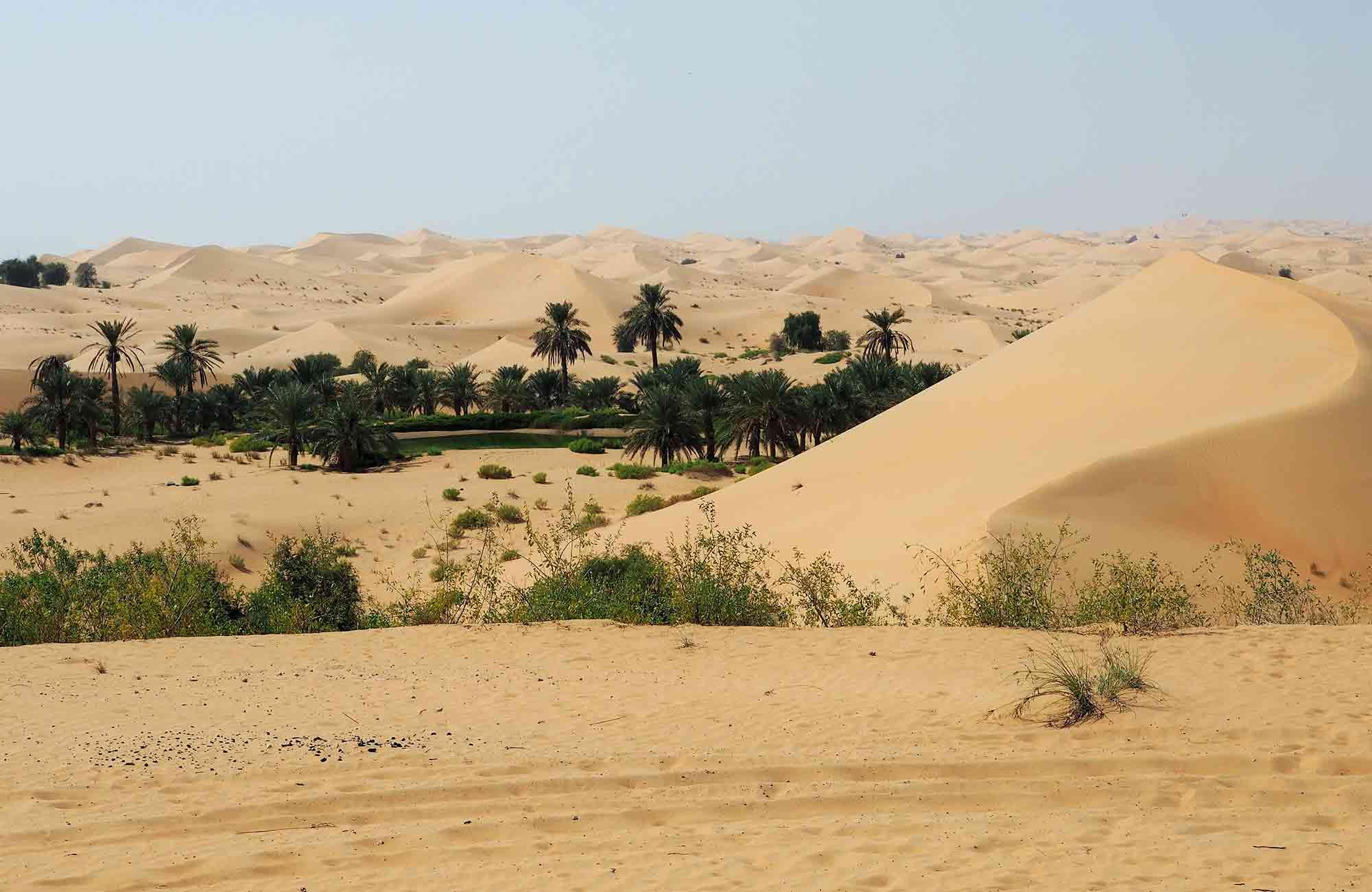 Voyage Abu Dhabi - Désert - Amplitudes