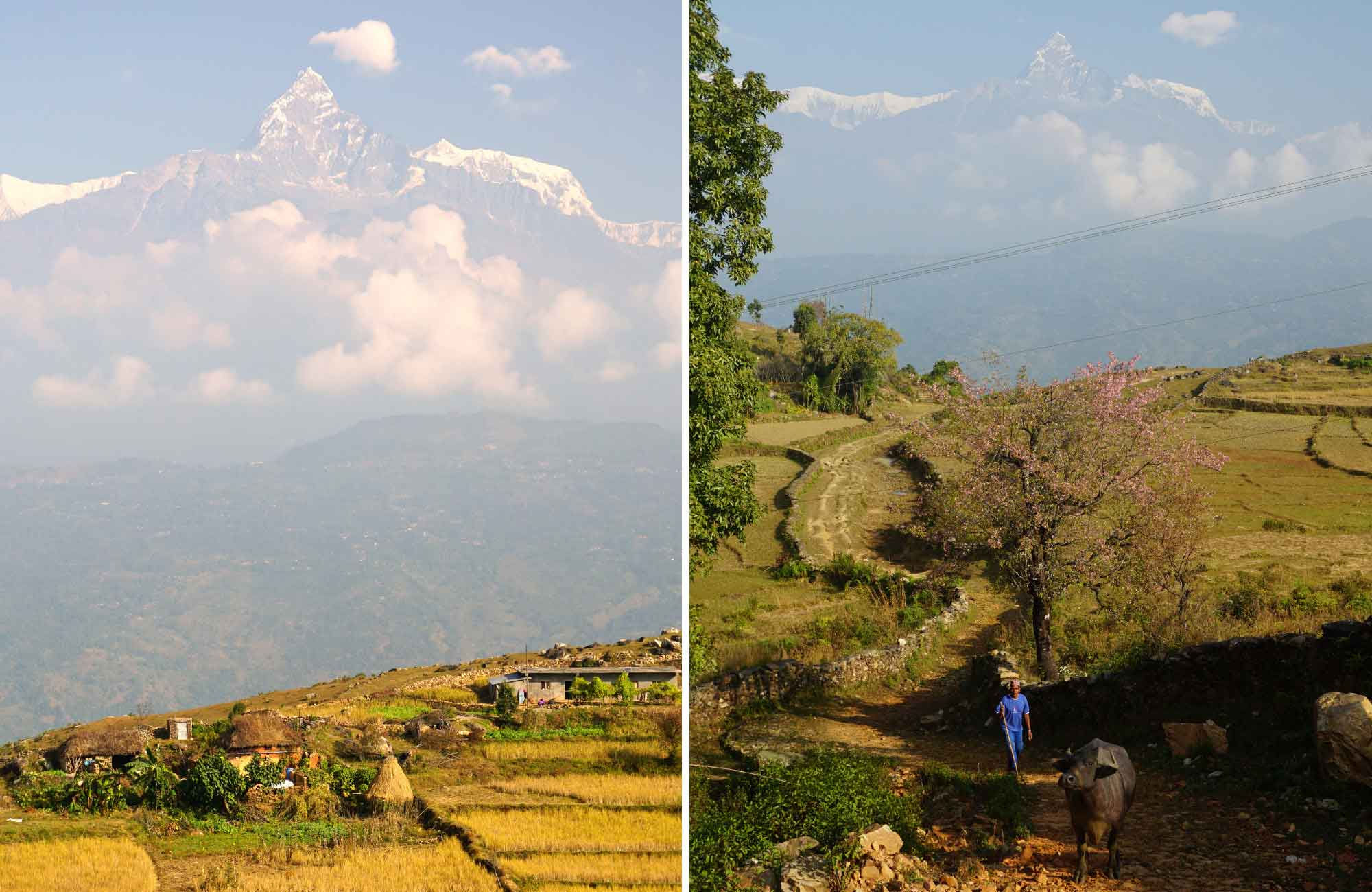 Pokhara au Népal - Amplitudes voyage