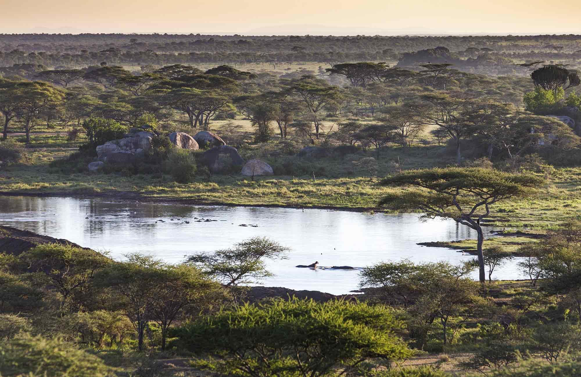 savane et lac pour partir en Tanzanie avec Amplitudes