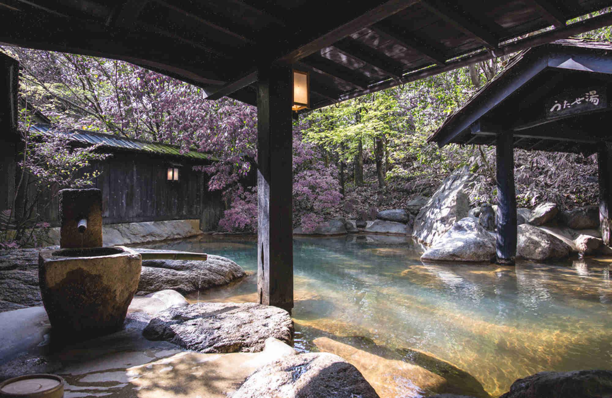 Onsen à Hakone lors du Hanami au Japon par Amplitudes