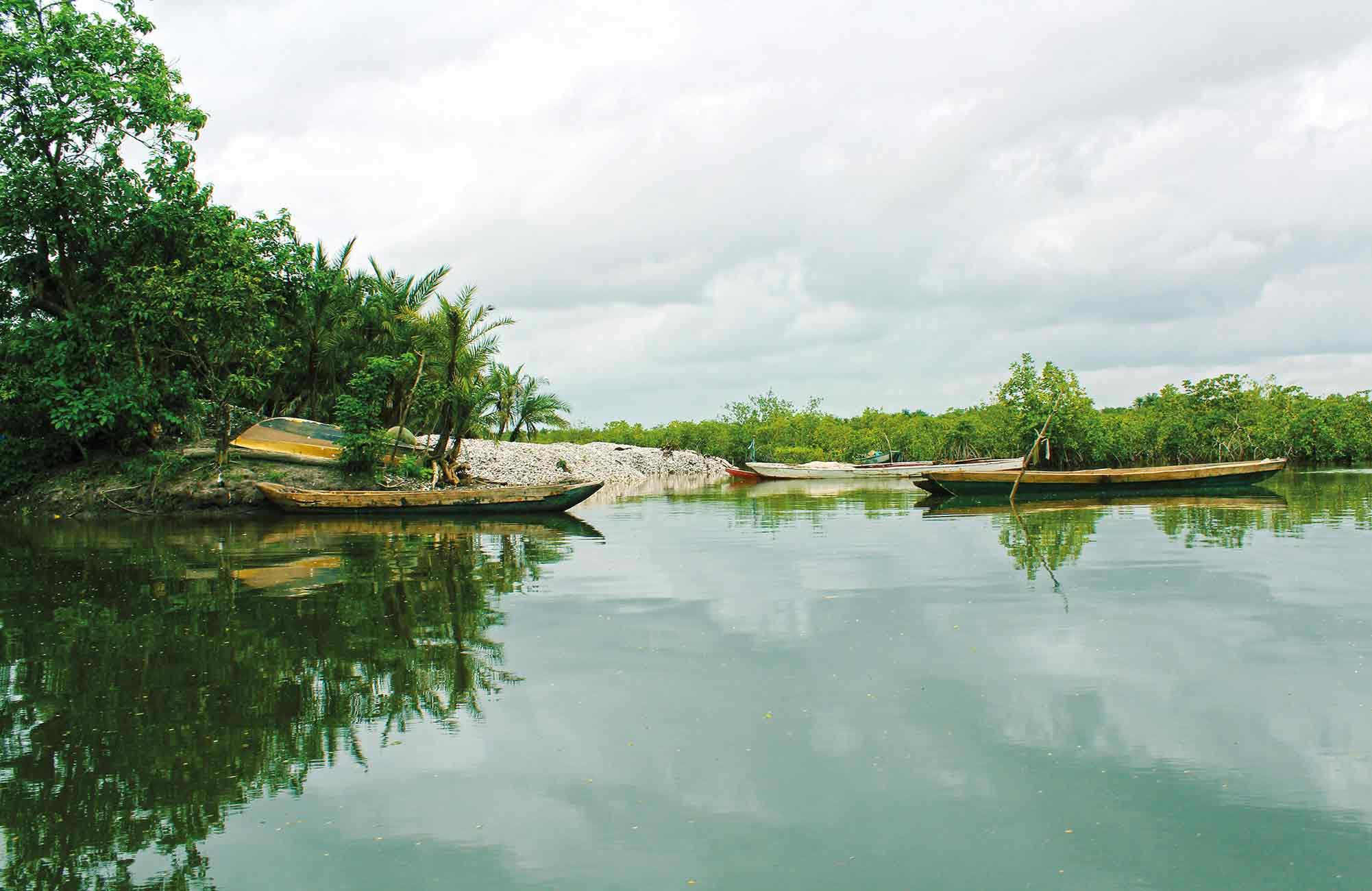 rives du fleuve Gambie lors d'une croisière fluviale de luxe avec Amplitudes