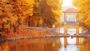 Momijigari en automne, quand partir au Japon avec Amplitudes