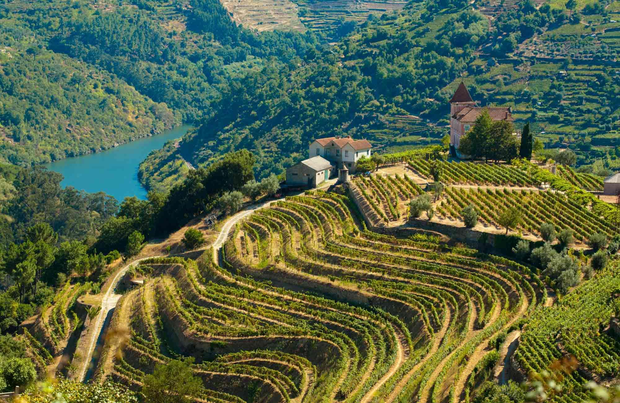 Voyage Portugal - Quinta Vallée du Douro - Amplitudes
