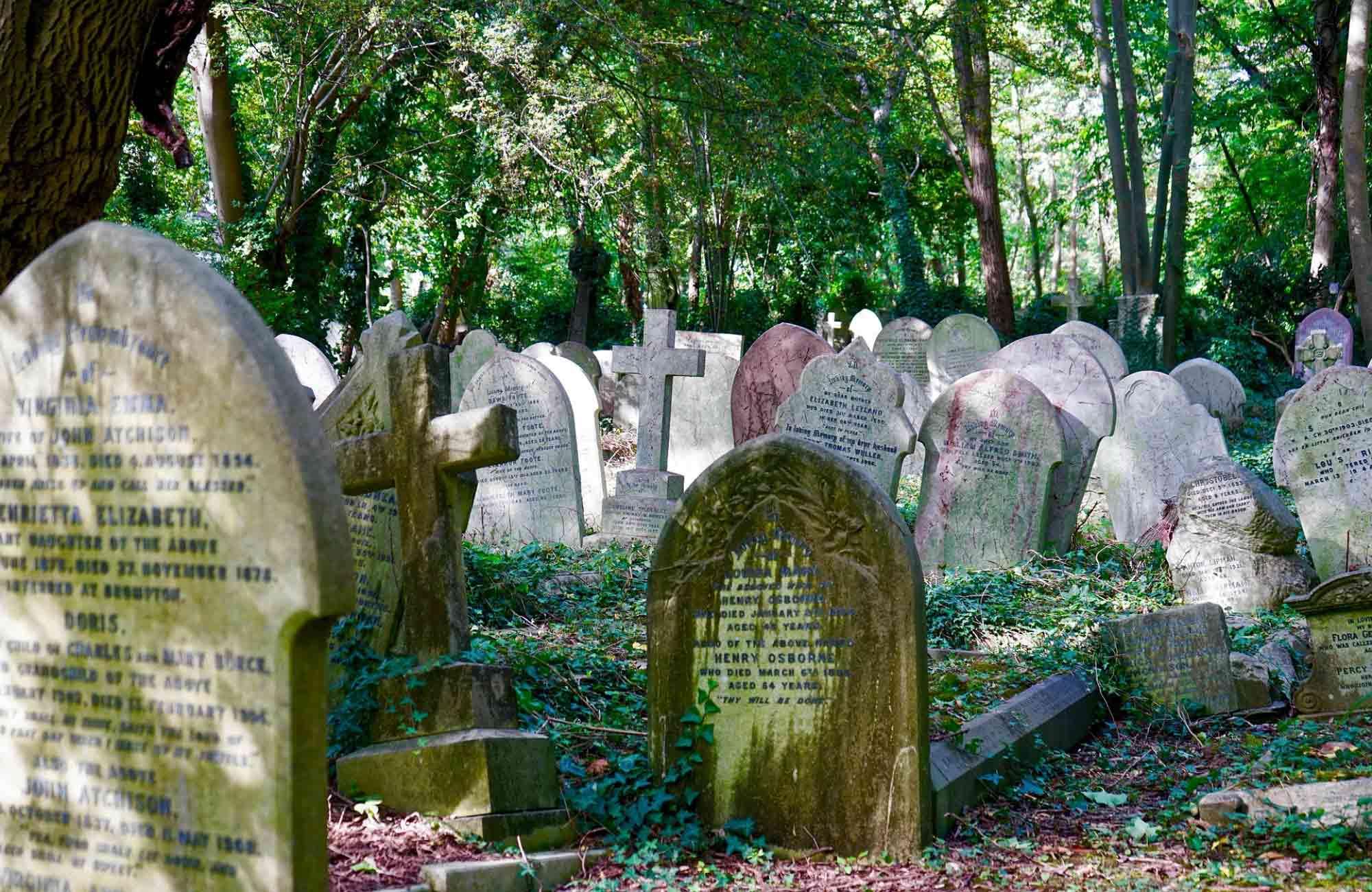 Voyage Angleterre - Londres cimetière d'highgate - Amplitudes