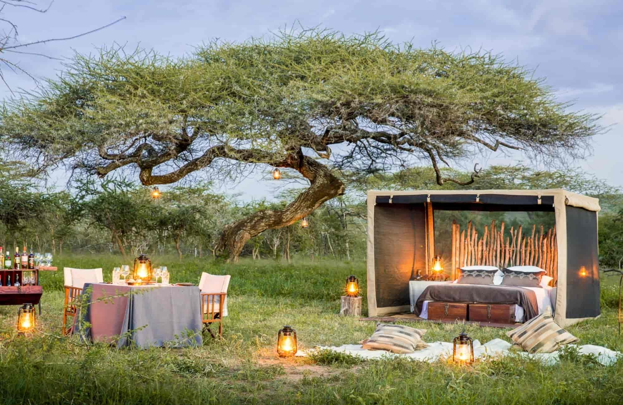 Voyage Tanzanie - Mwiba Lodge - Amplitudes