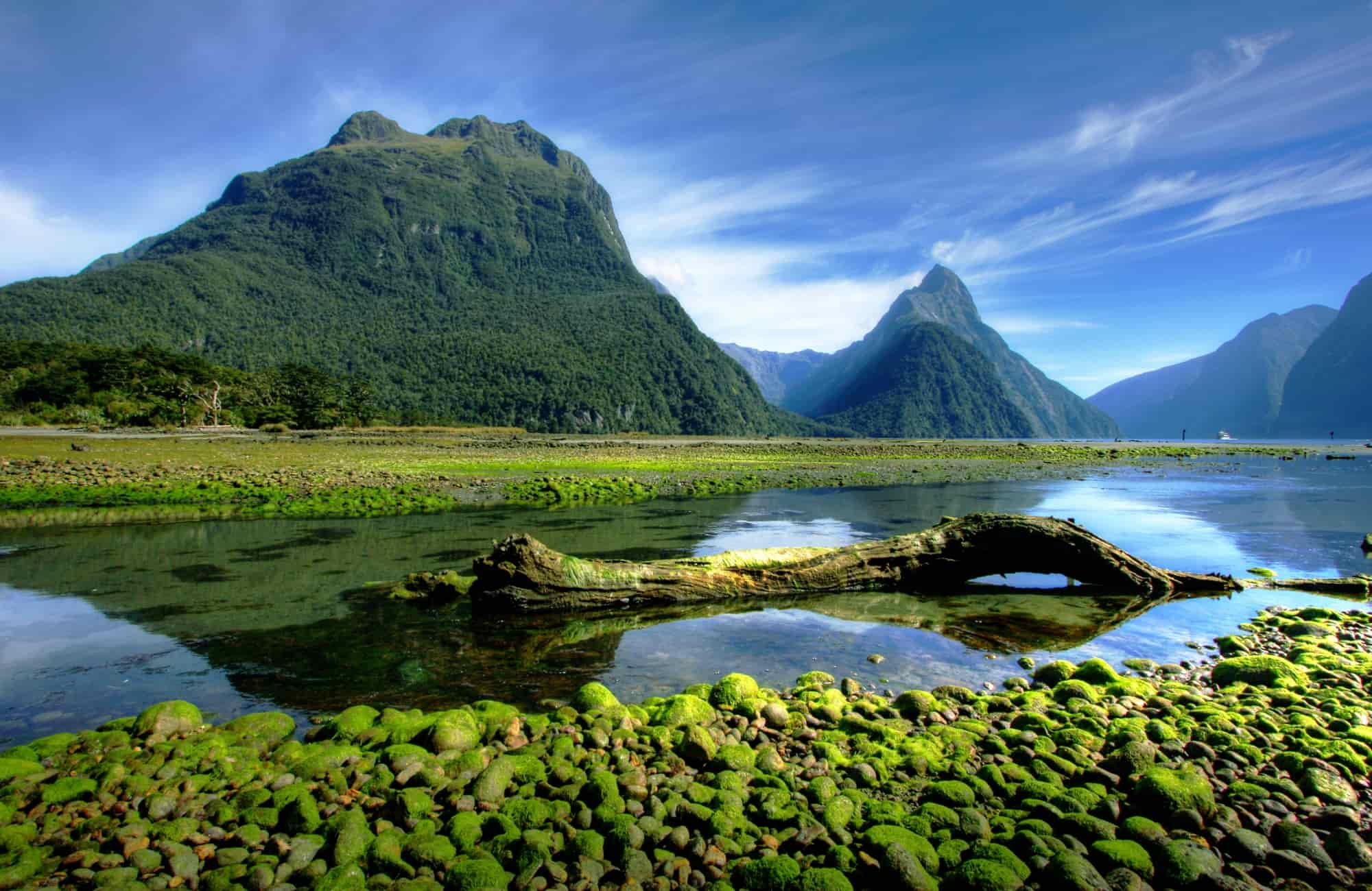 Milford Sound, New Zealand - Recoup