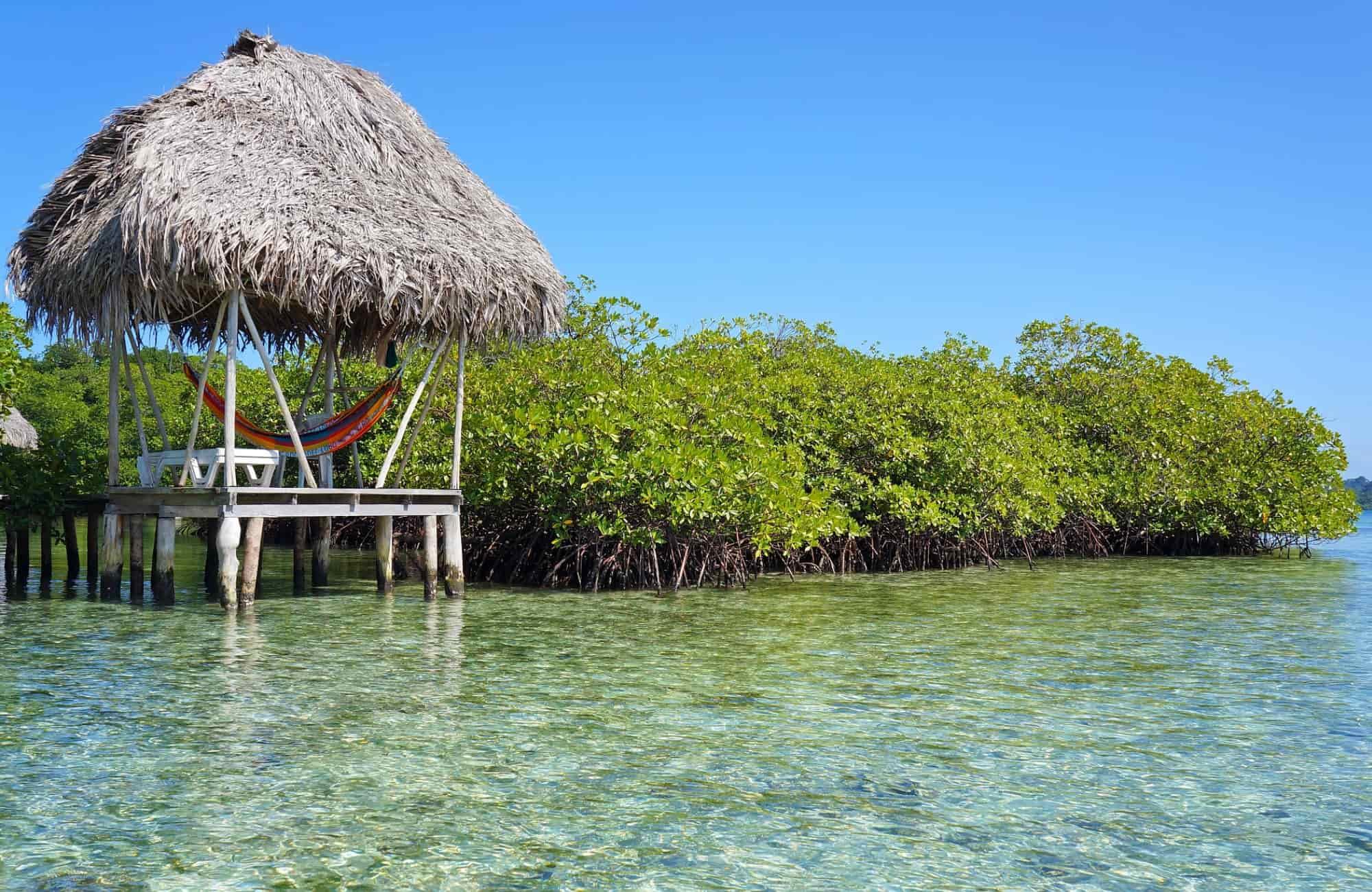 Voyage Panama - Bocas del Toro - Amplitudes