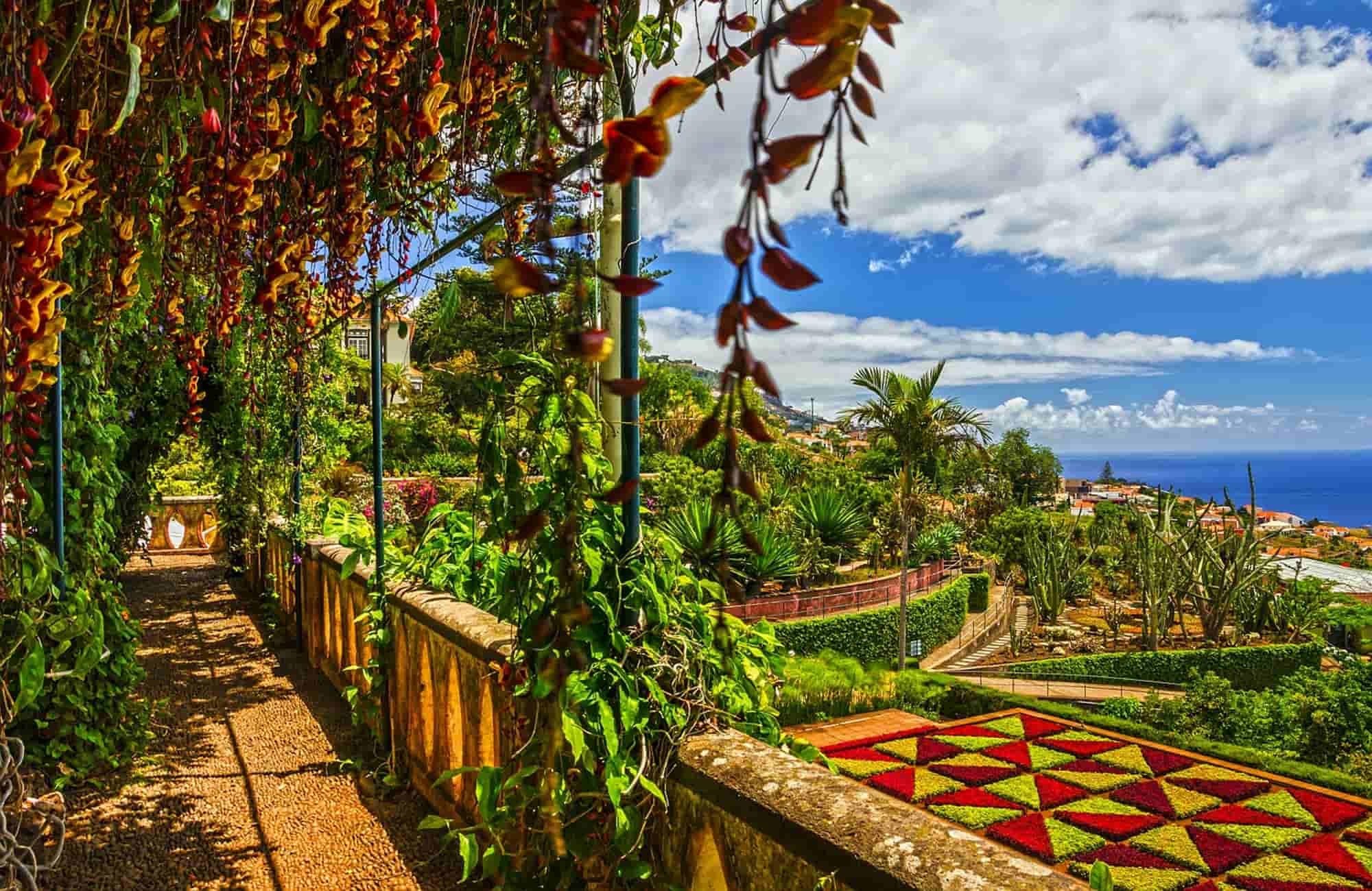 Voyage Madère printemps - Funchal - Amplitudes