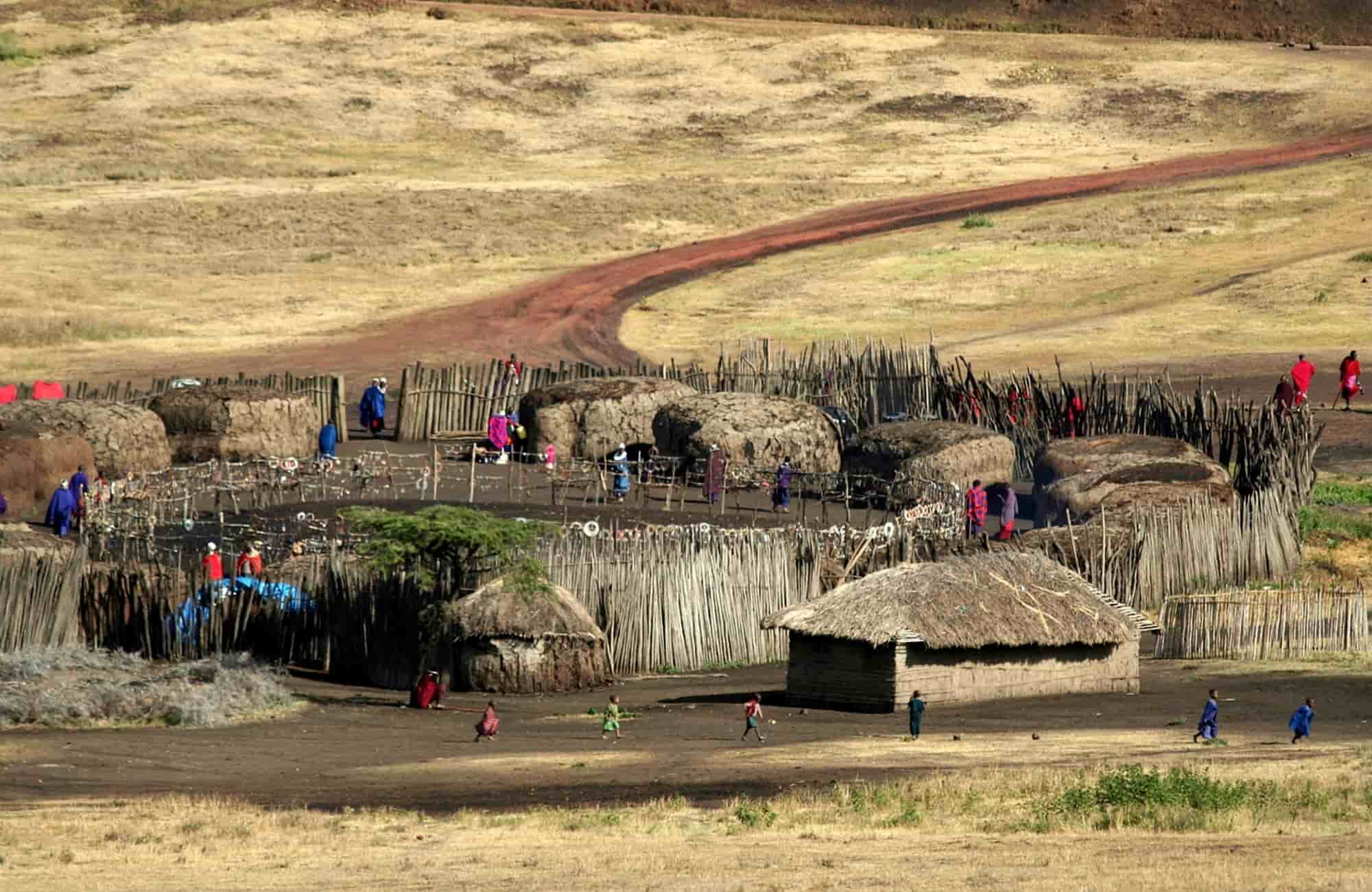 Voyage en Tanzanie - Parc National du Serengeti- Amplitudes