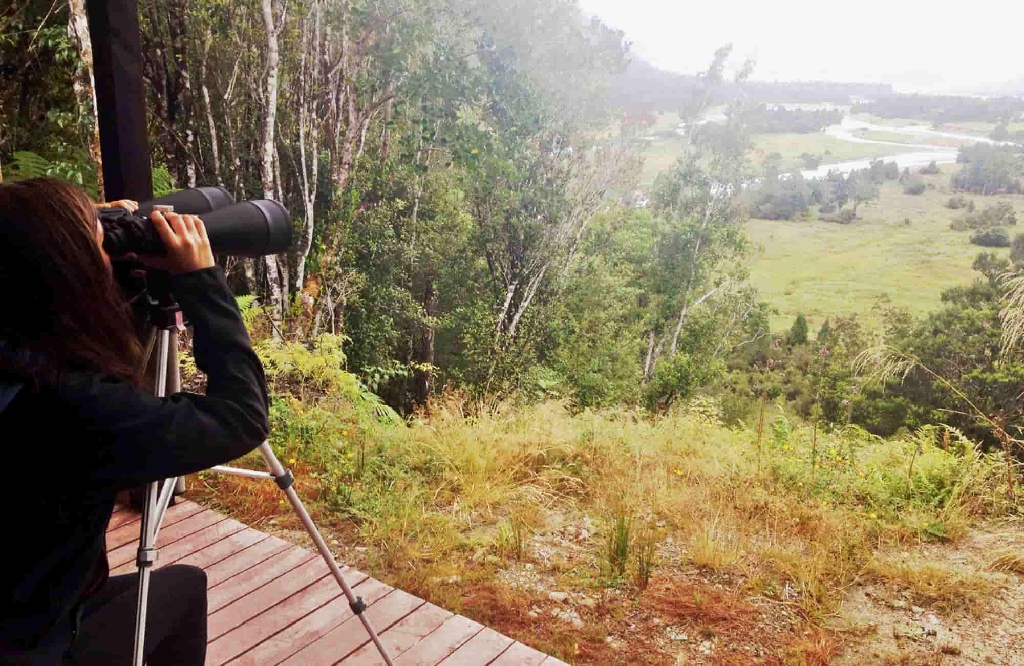 Voyage en Nouvelle-Zélande - Hokitika - Amplitudes