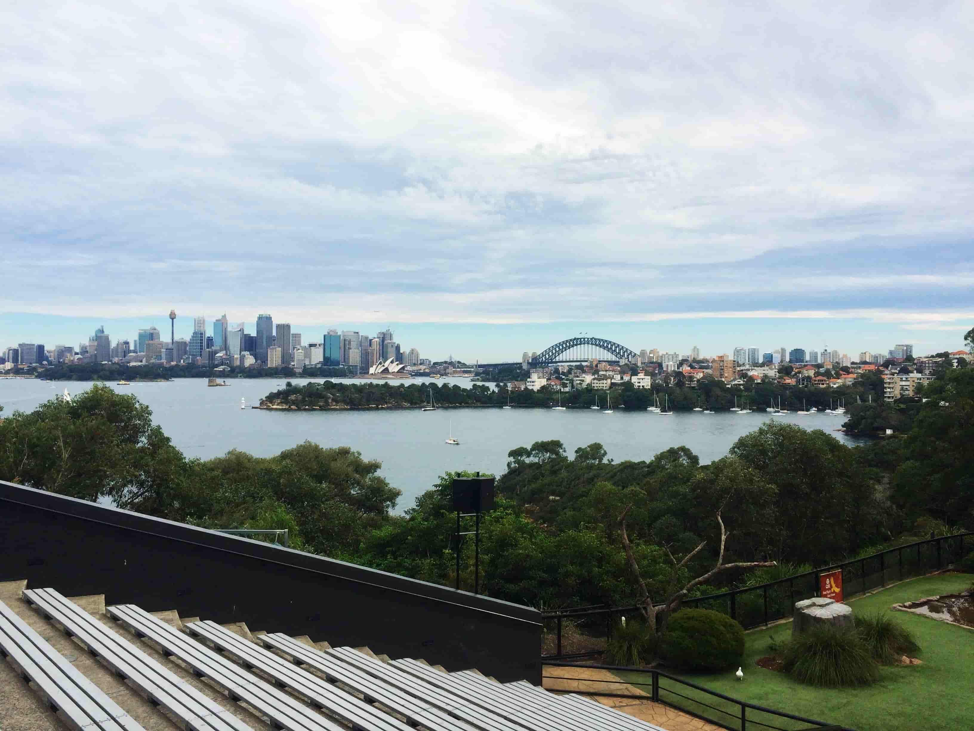 Voyage en Australie - Zoo de Sydney - Amplitudes