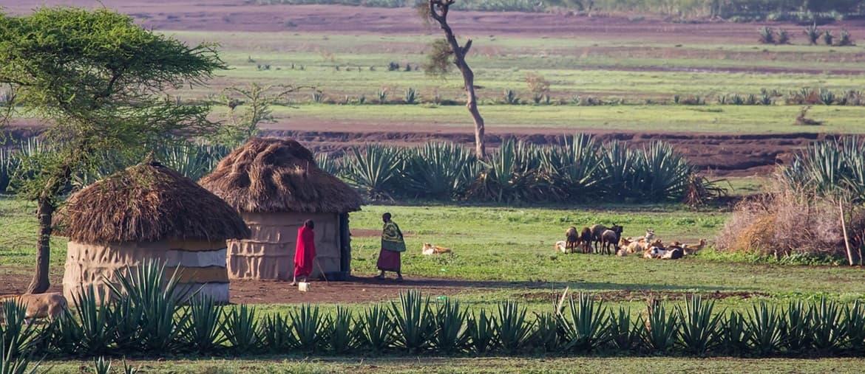 Voyage en Tanzanie - Massaï - Amplitudes