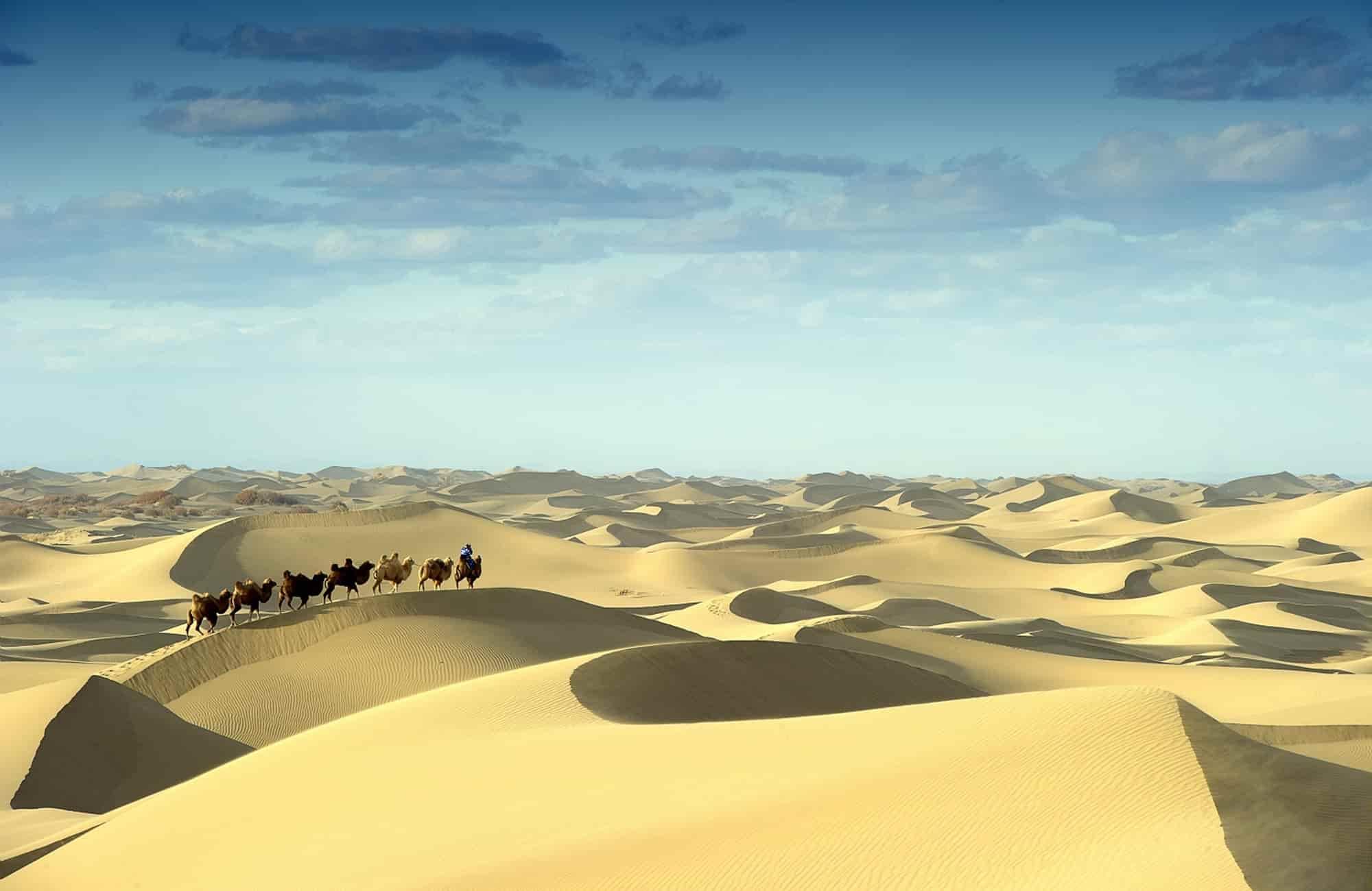 Voyage en Mongolie - Désert de Gobi - Amplitudes