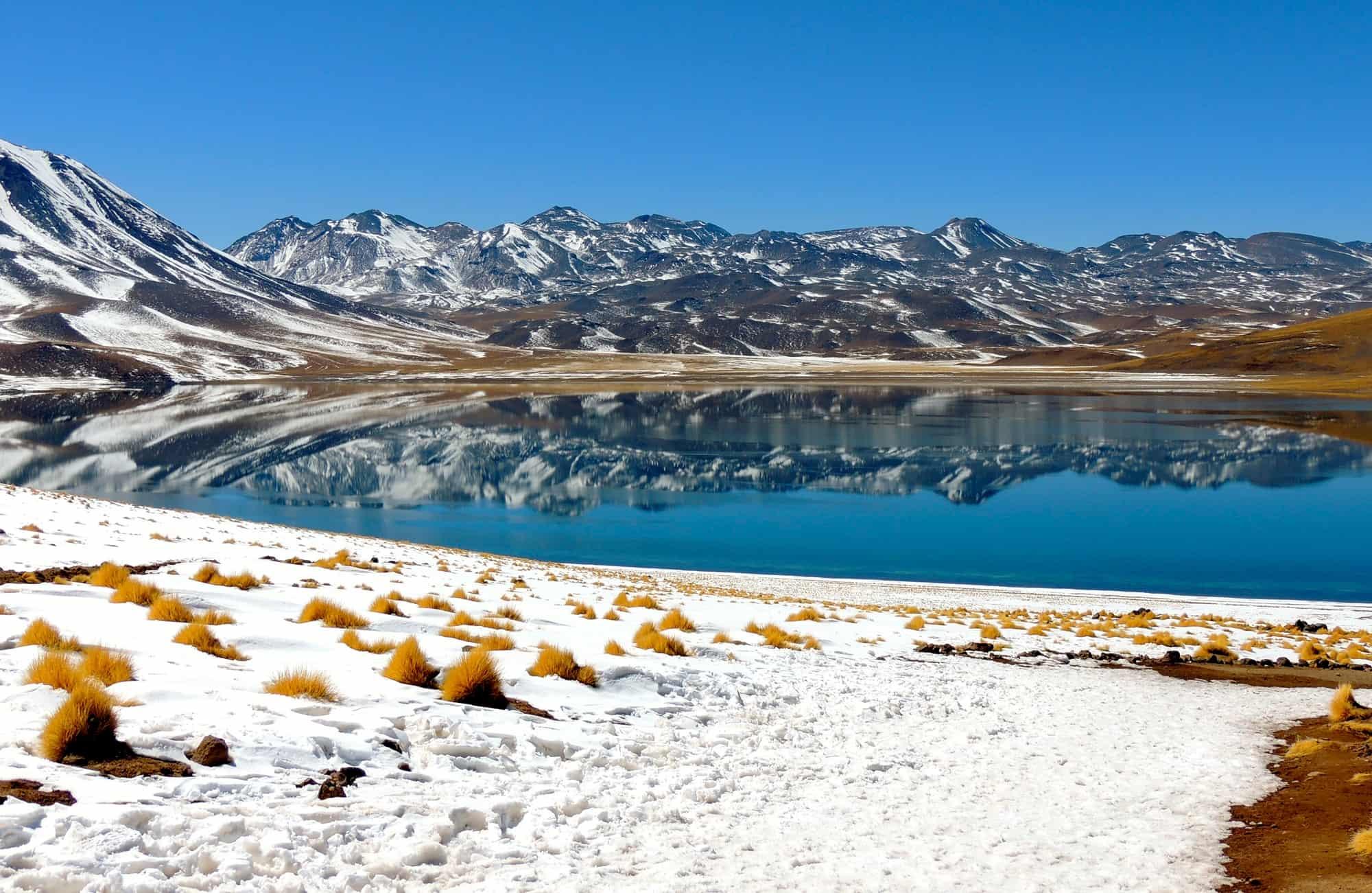 Voyage au Chili - Lagune du Miscanti - Amplitudes