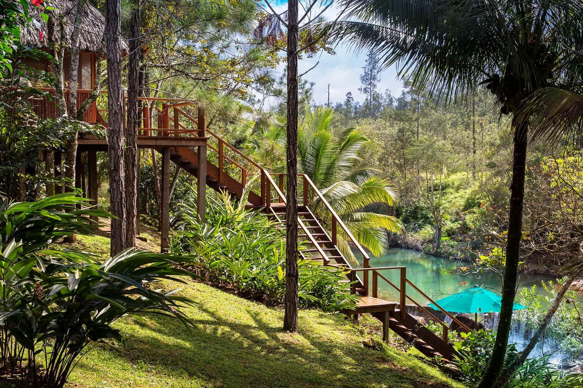 Au milieu de la jungle, se cache certains des plus beaux écolodges du pays