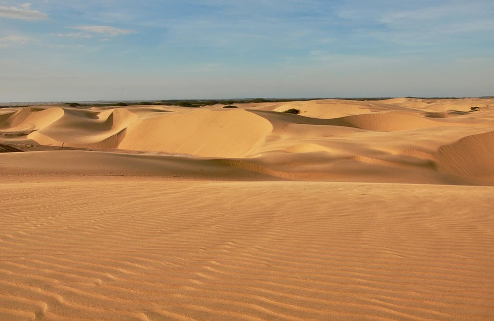 Voyage en Argentine - Medanos - Amplitudes