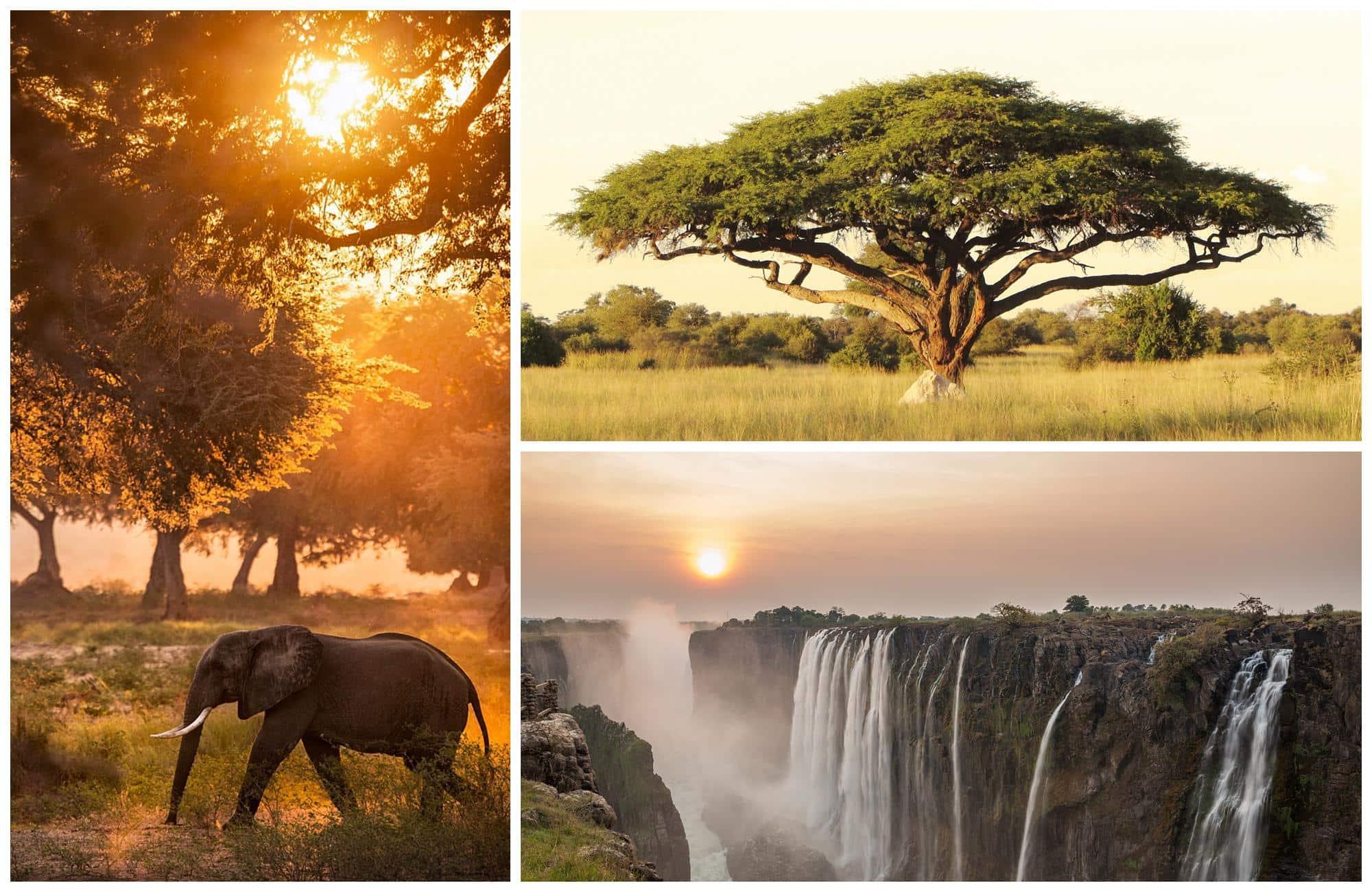 Fin de journée au Zimbabwe