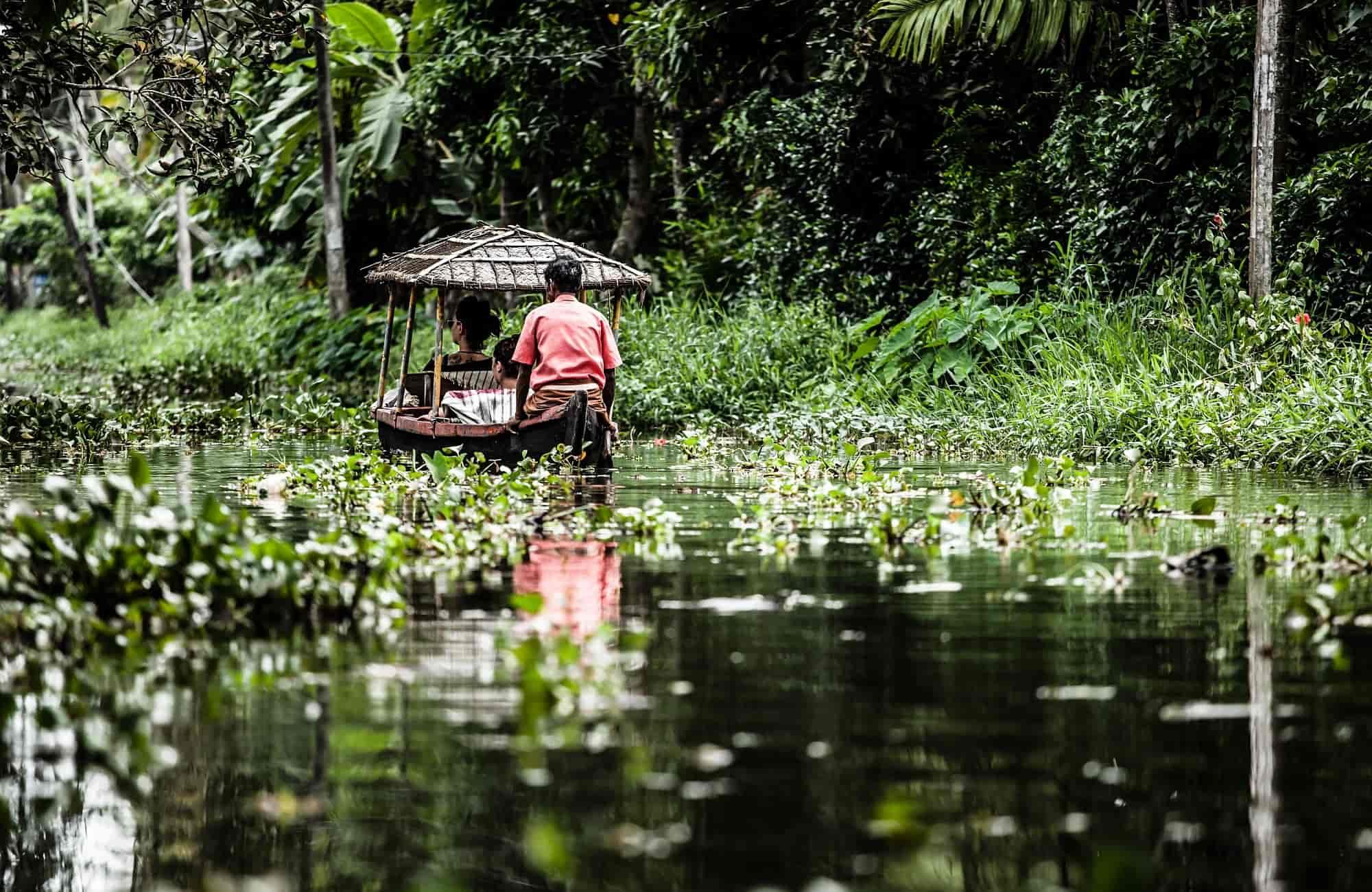Voyage au Kerala - Backwaters - Amplitudes