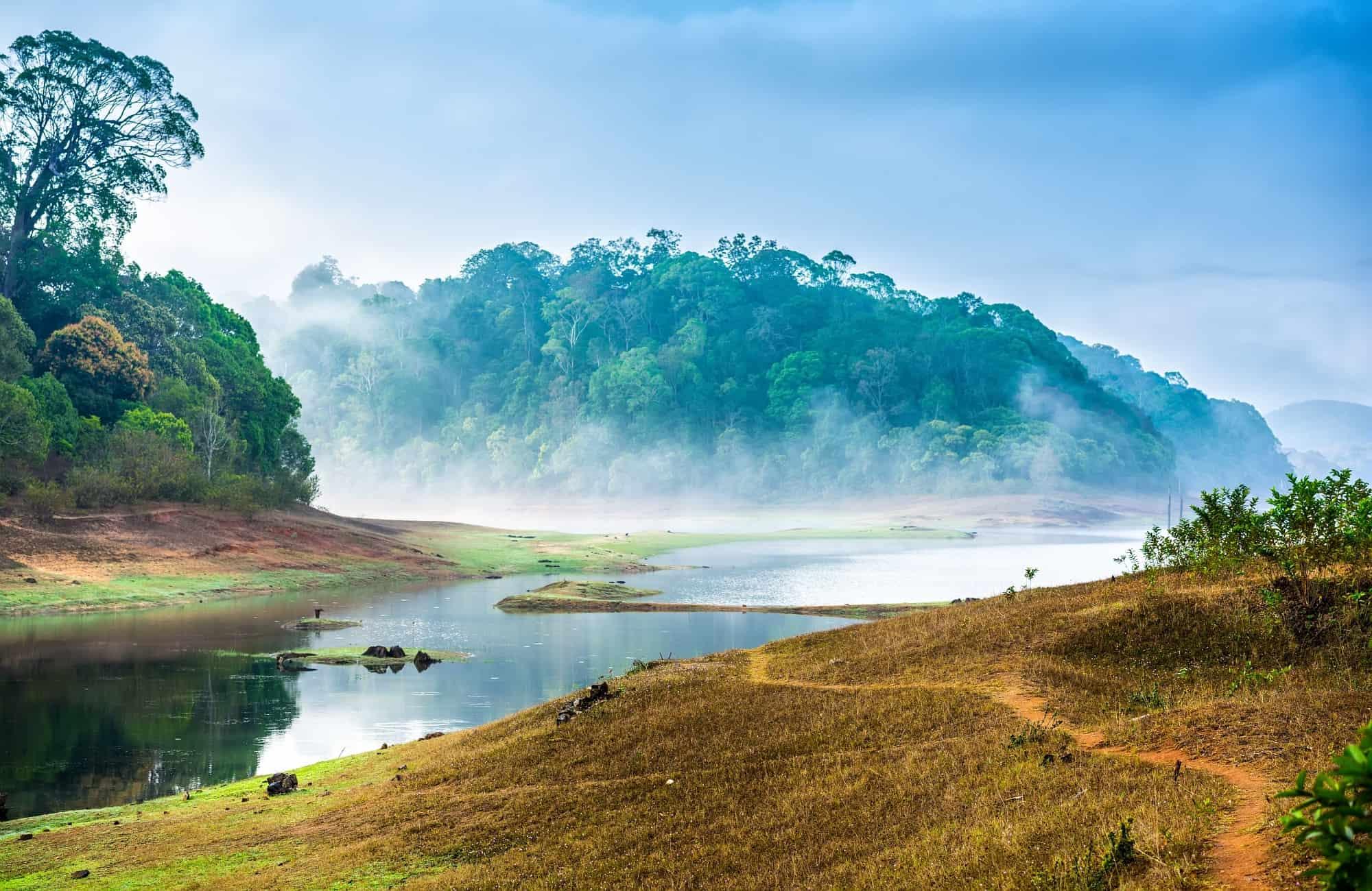 Voyage au Kerala - Parc National de Periyar - Amplitudes