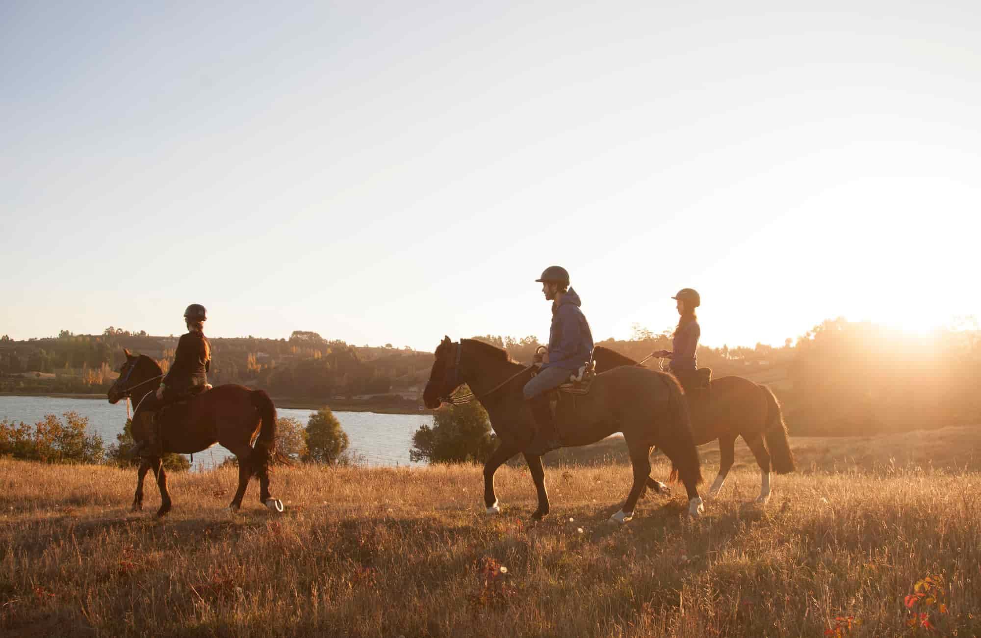 Voyage Chiloé - Balade à cheval sur l'île - Amplitudes