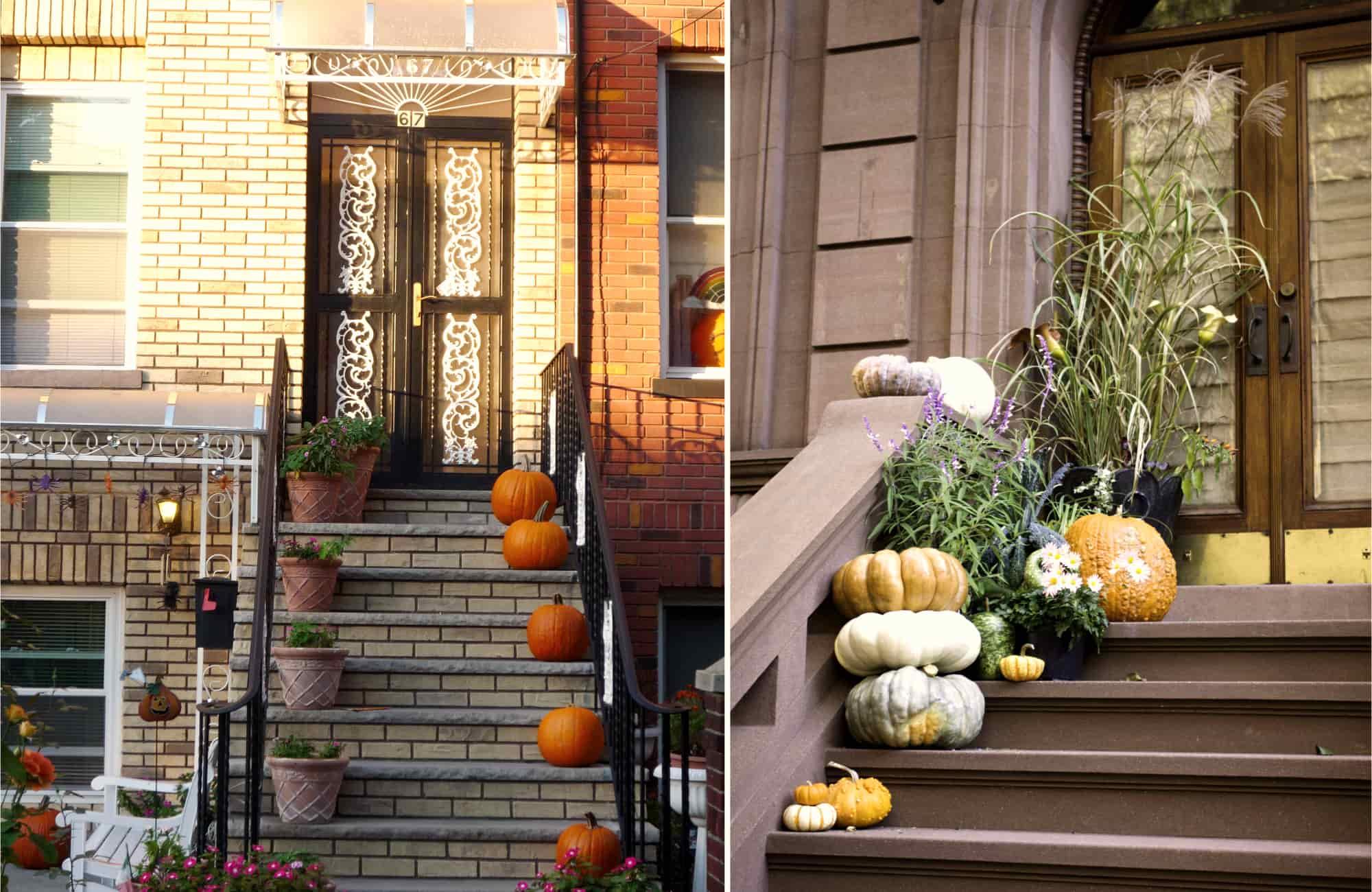 Voyage New-York - Halloween à New-York - Amplitudes