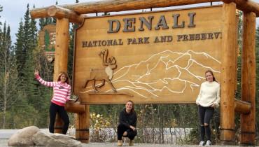 Voyage Alaska - Parc National de Denali - Amplitudes