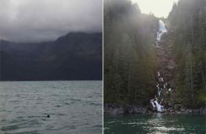 Voyage Alaska - Péninsule Kenai - Amplitudes