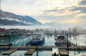 Voyage Alaska - Port de Valdez - Amplitudes