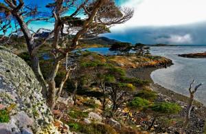 Voyage Cap Horn - Baie Wulaia - Amplitudes