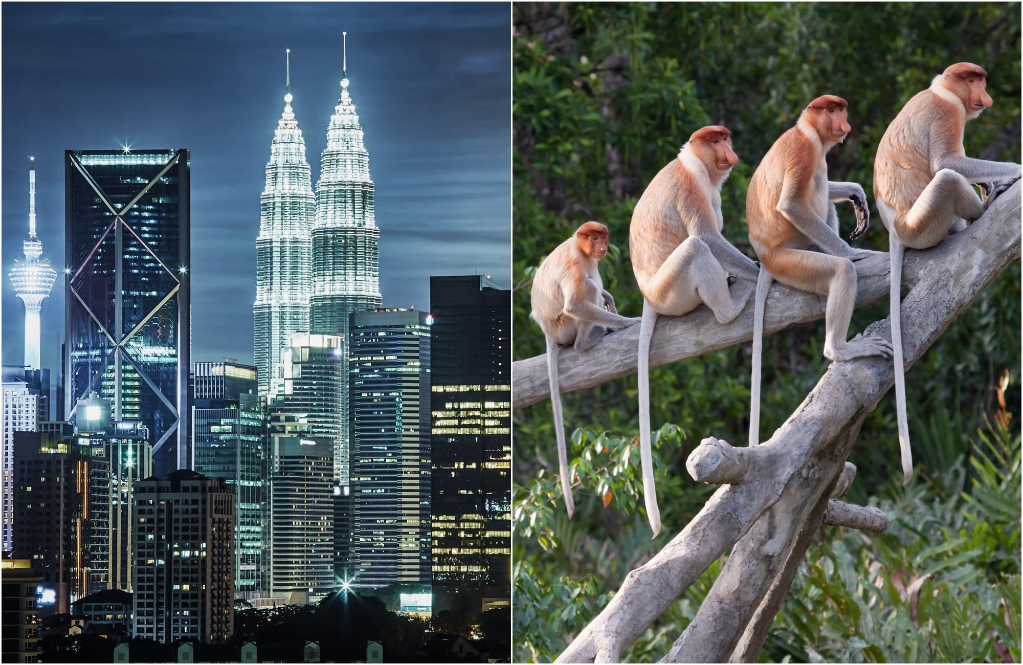 Voyage Malaisie - Bornéo - Tours de Kuala Lumpur et singes de Kota Kinabalu - Amplitudes