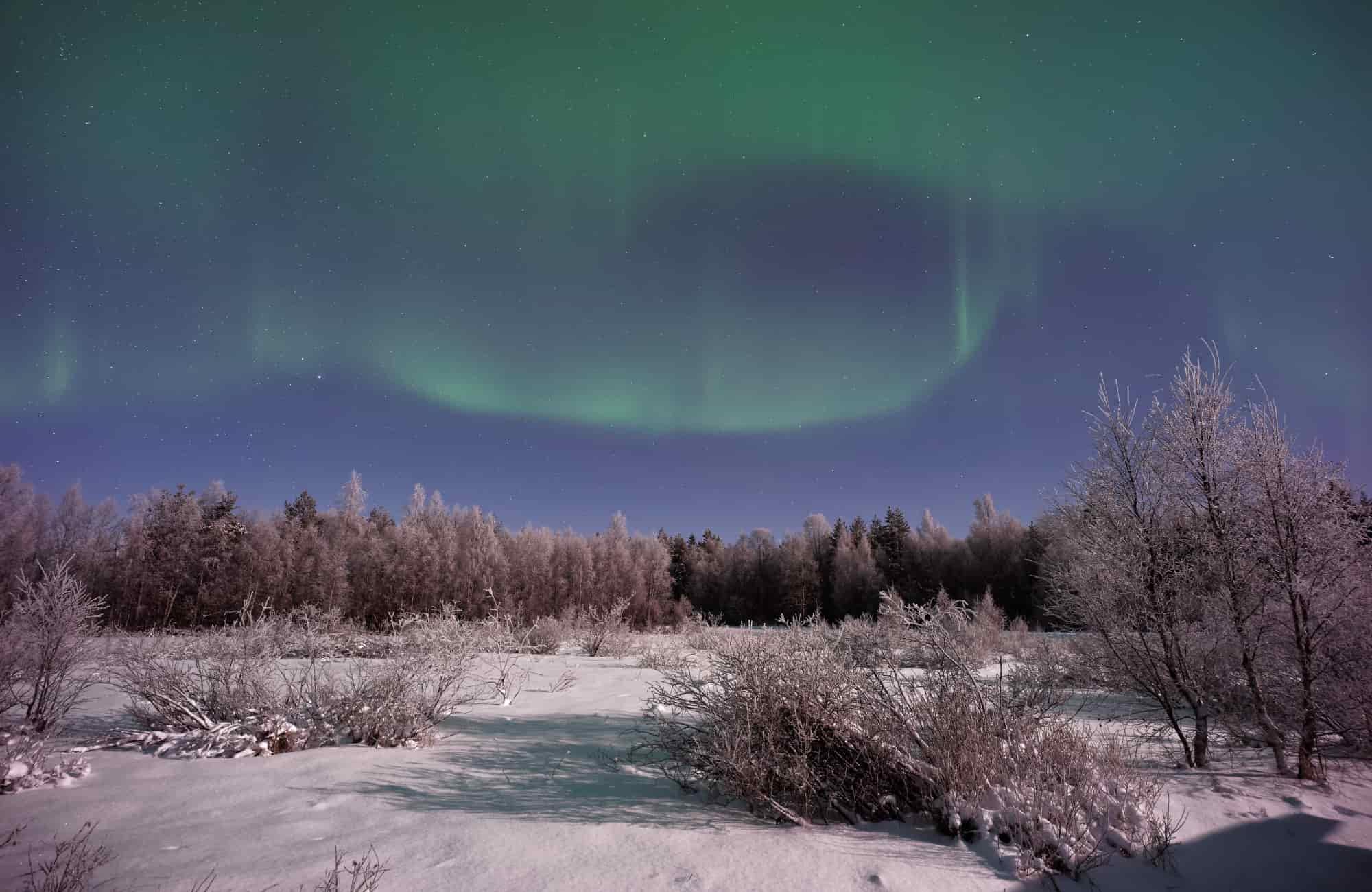 Voyage Laponie - Aurores boréales - Amplitudes