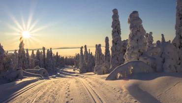 Voyage Laponie - Route de Laponie finlandaise - Amplitudes