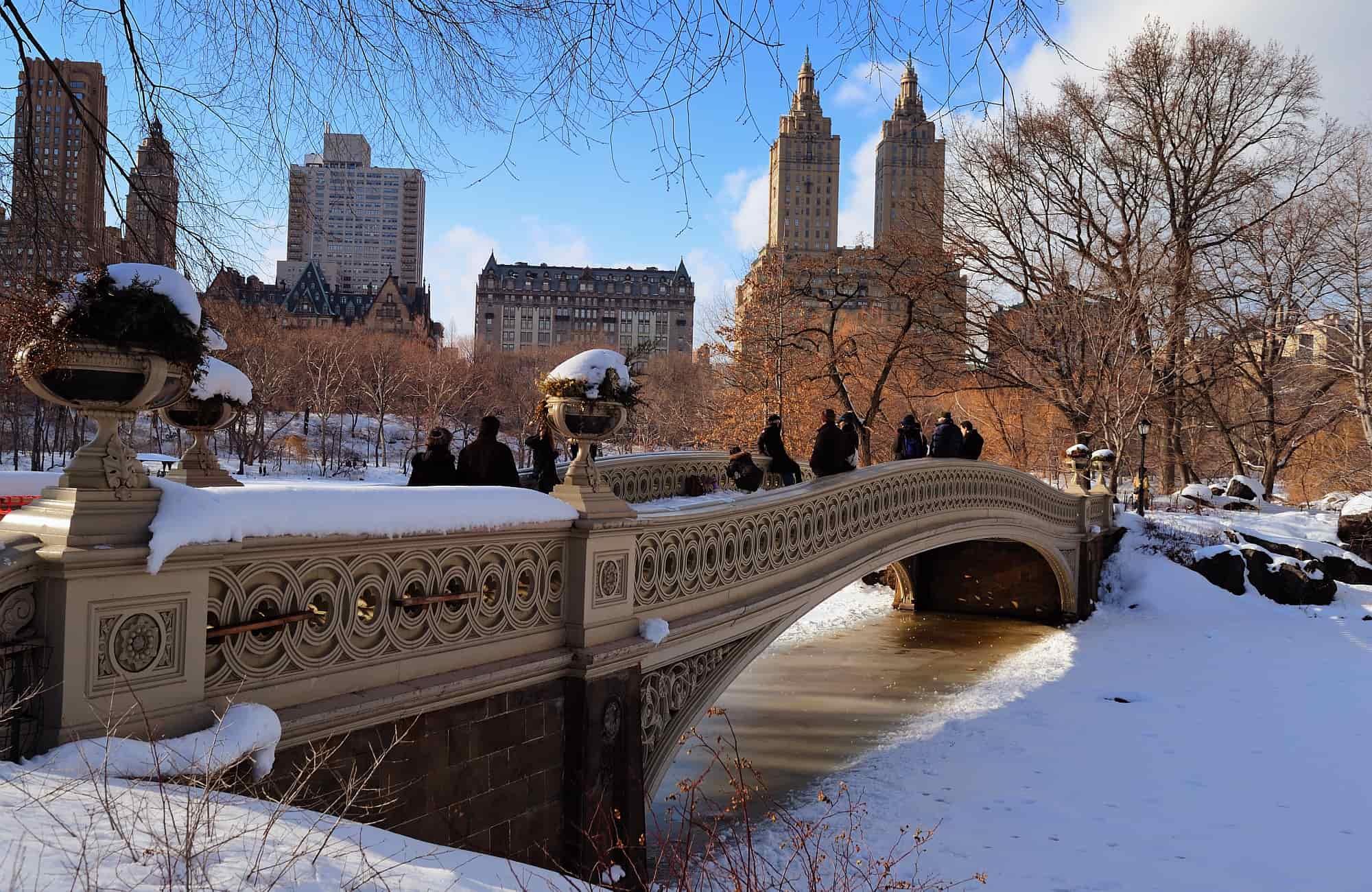 Voyage New-York - Central Park - Amplitudes