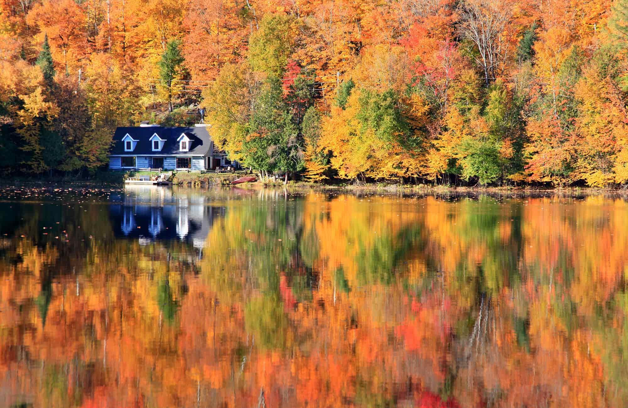 Voyage au Québec - Une cabane au fond des bois - Amplitudes