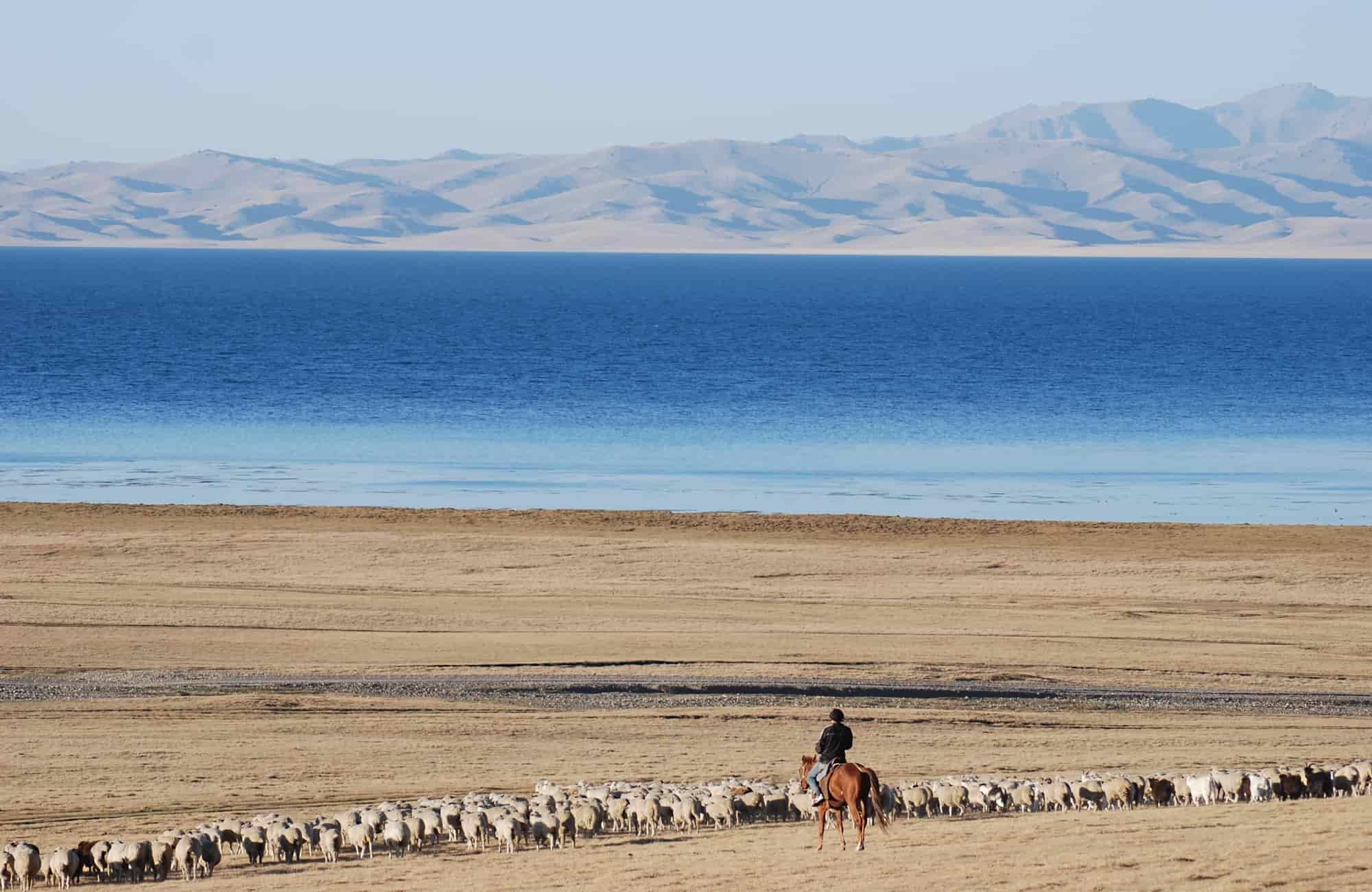 Voyage Kirghizistan - Nomade lac Issyk Kul - Amplitudes