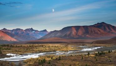 Voyage Alaska - Les parcs d'Alaska - Amplitudes