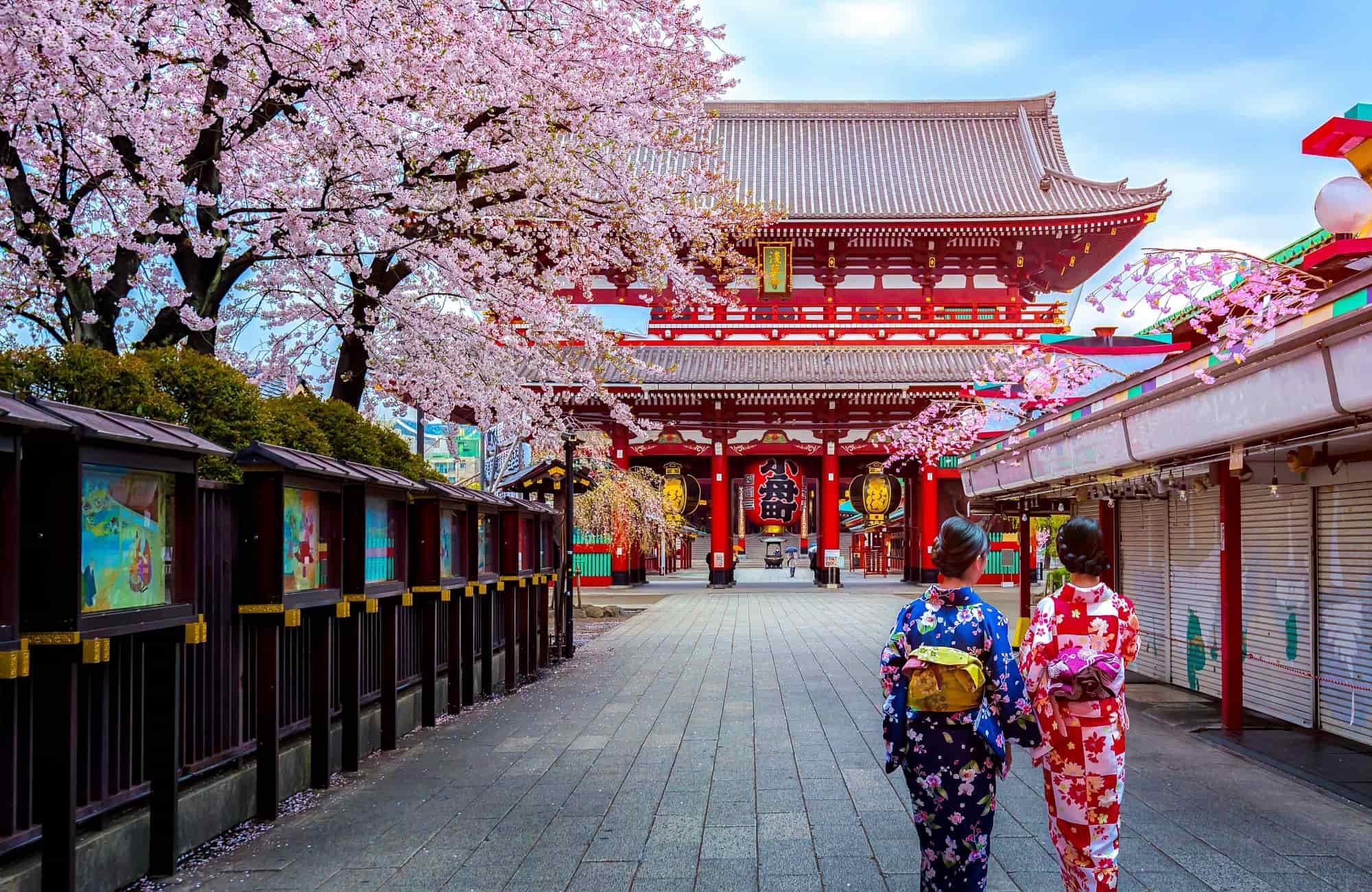 Voyage Japon - Tokyo - Amplitudes