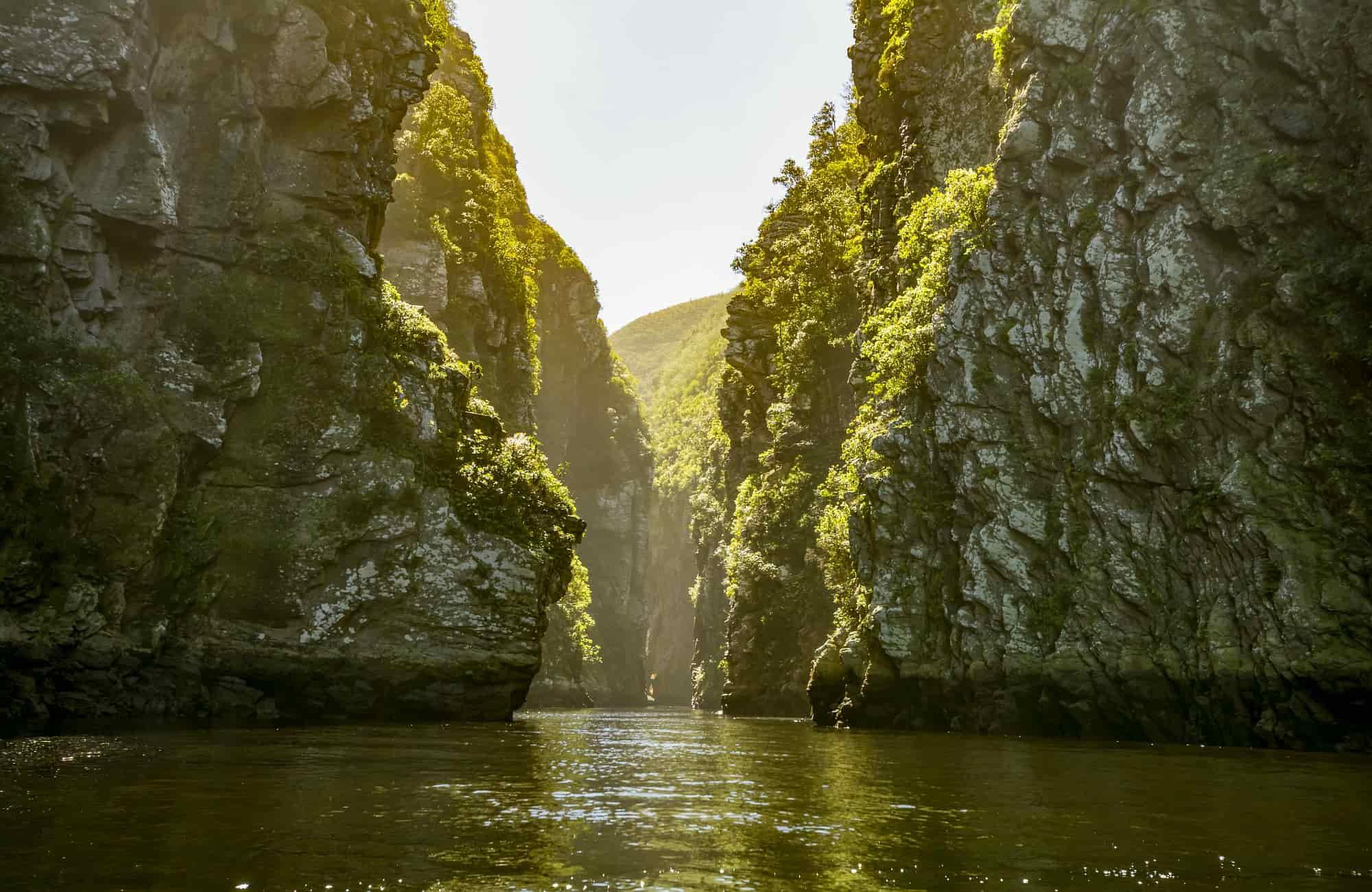 Voyage Afrique du Sud - Le canyon de la rivière Tsitsikamma - Amplitudes